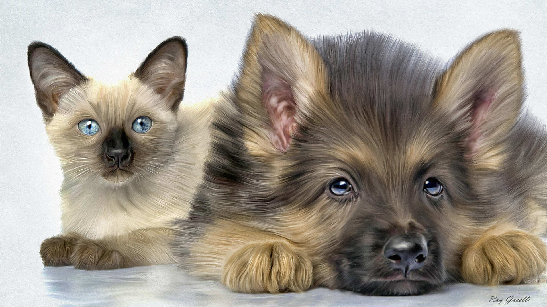 Picture Puppy Shepherd Dogs Cats Animals 1920×1080