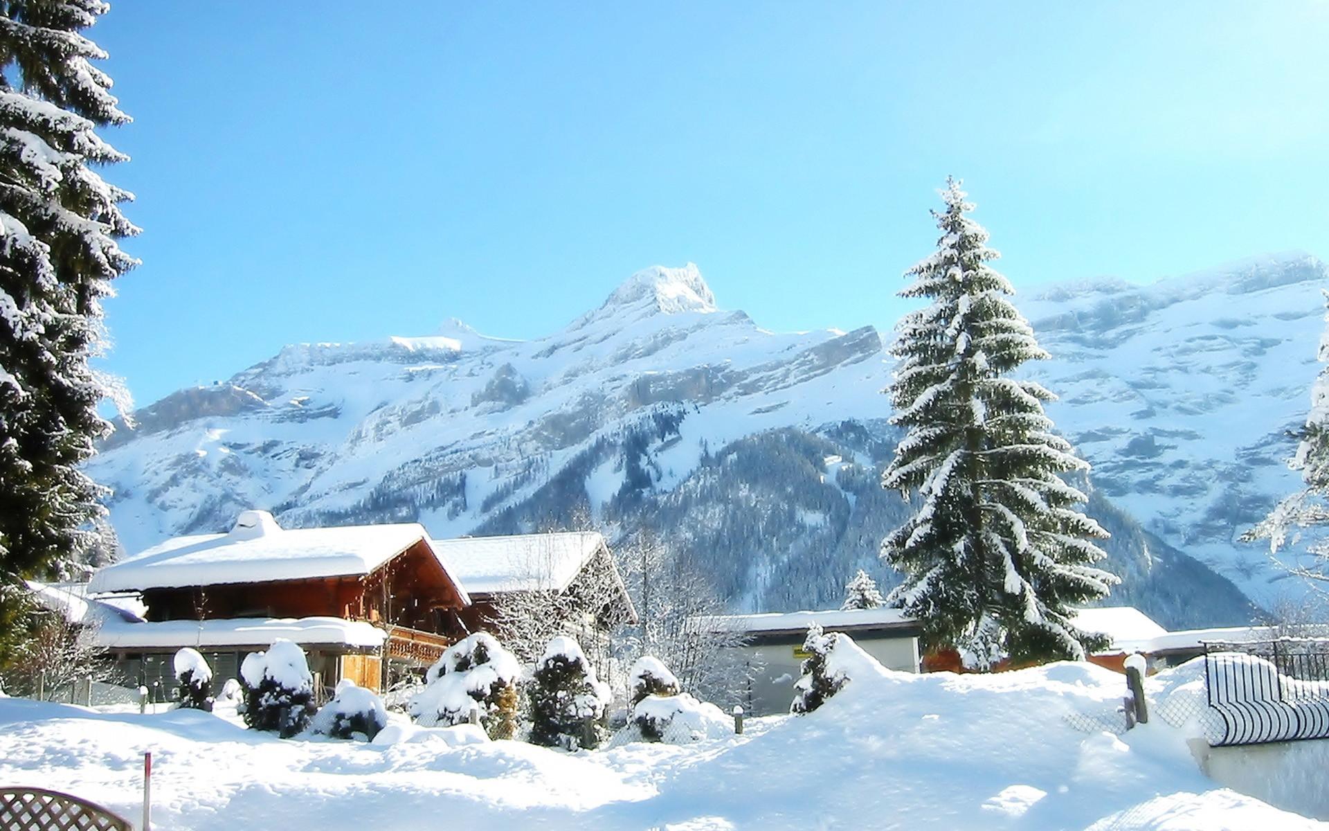 Previous: Snowy Yard …