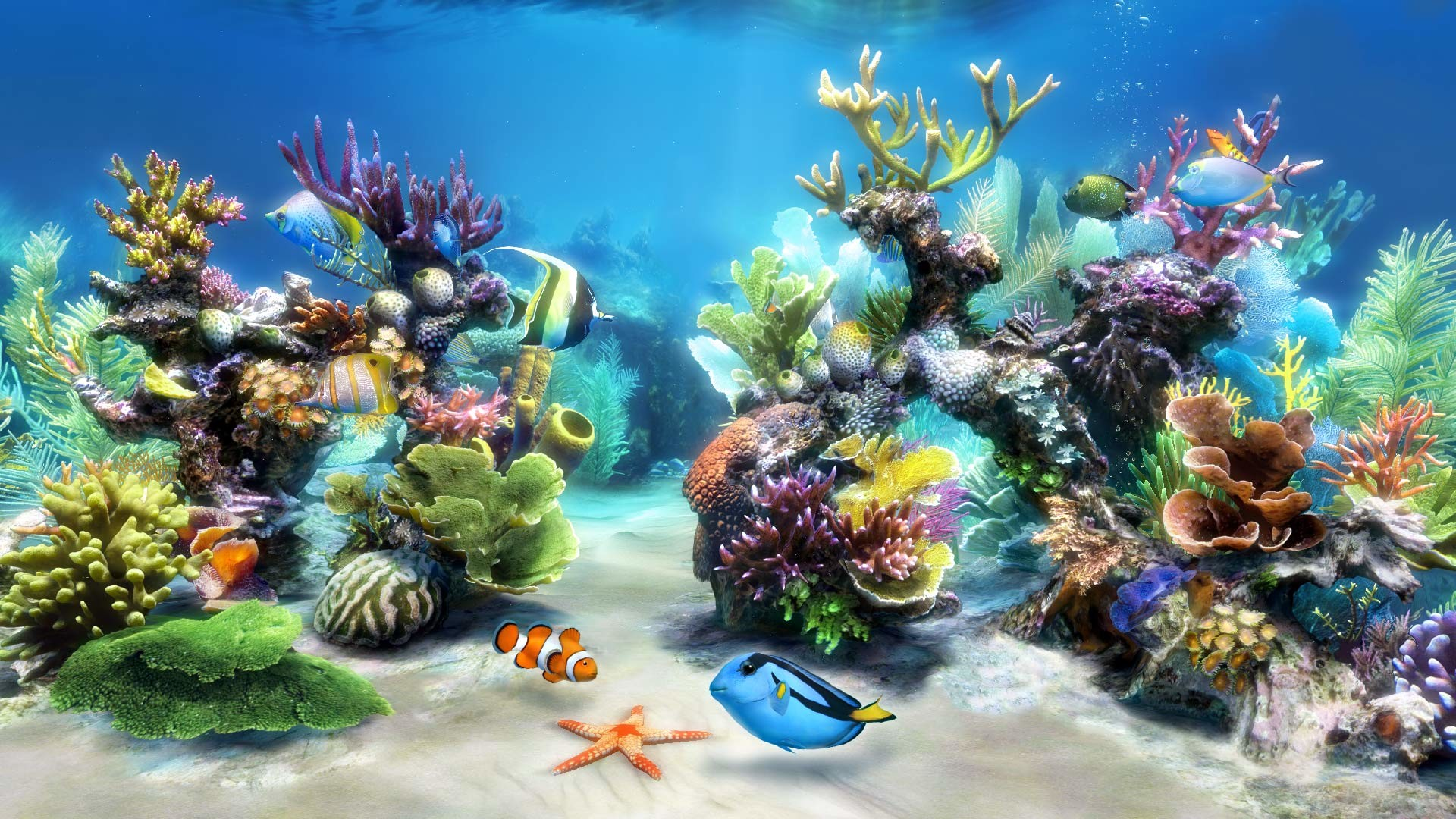 Full Size of Fish Tank Stirring Fish Tank Screensaver Photos Concept  Freeware Screensaversdows Best Ukeknd Freesh …