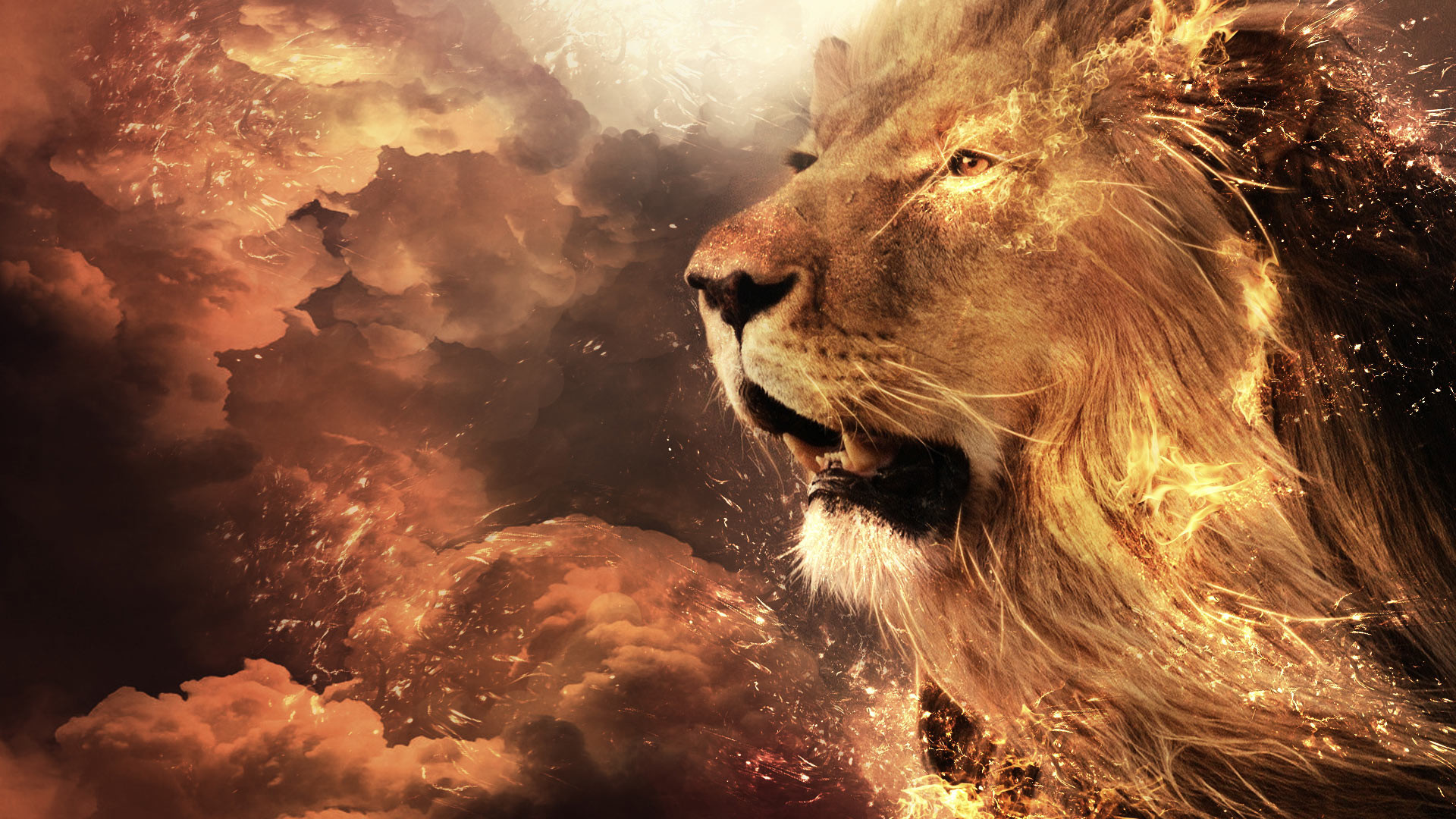 Abstract Fire Lion Face Wallpaper Wide