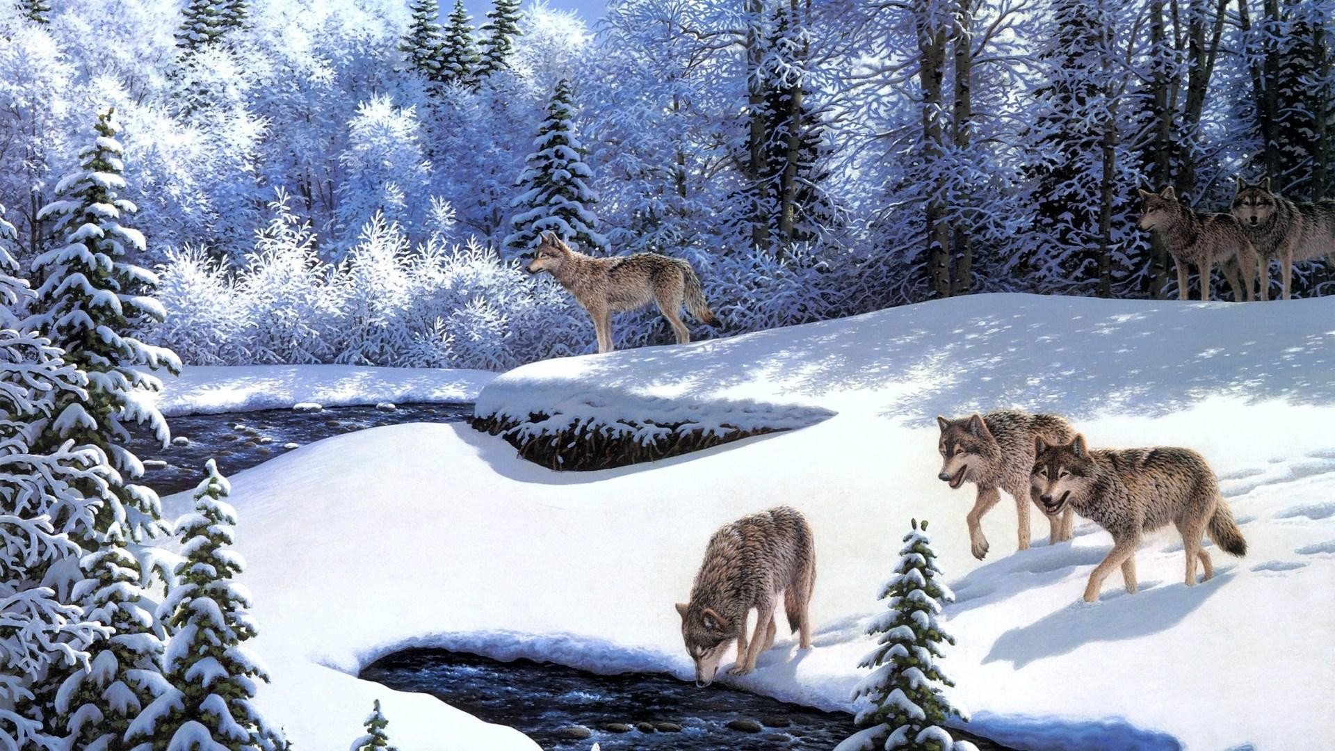Winter Wolves Wallpaper – HD Wallpapers Backgrounds of Your Choice