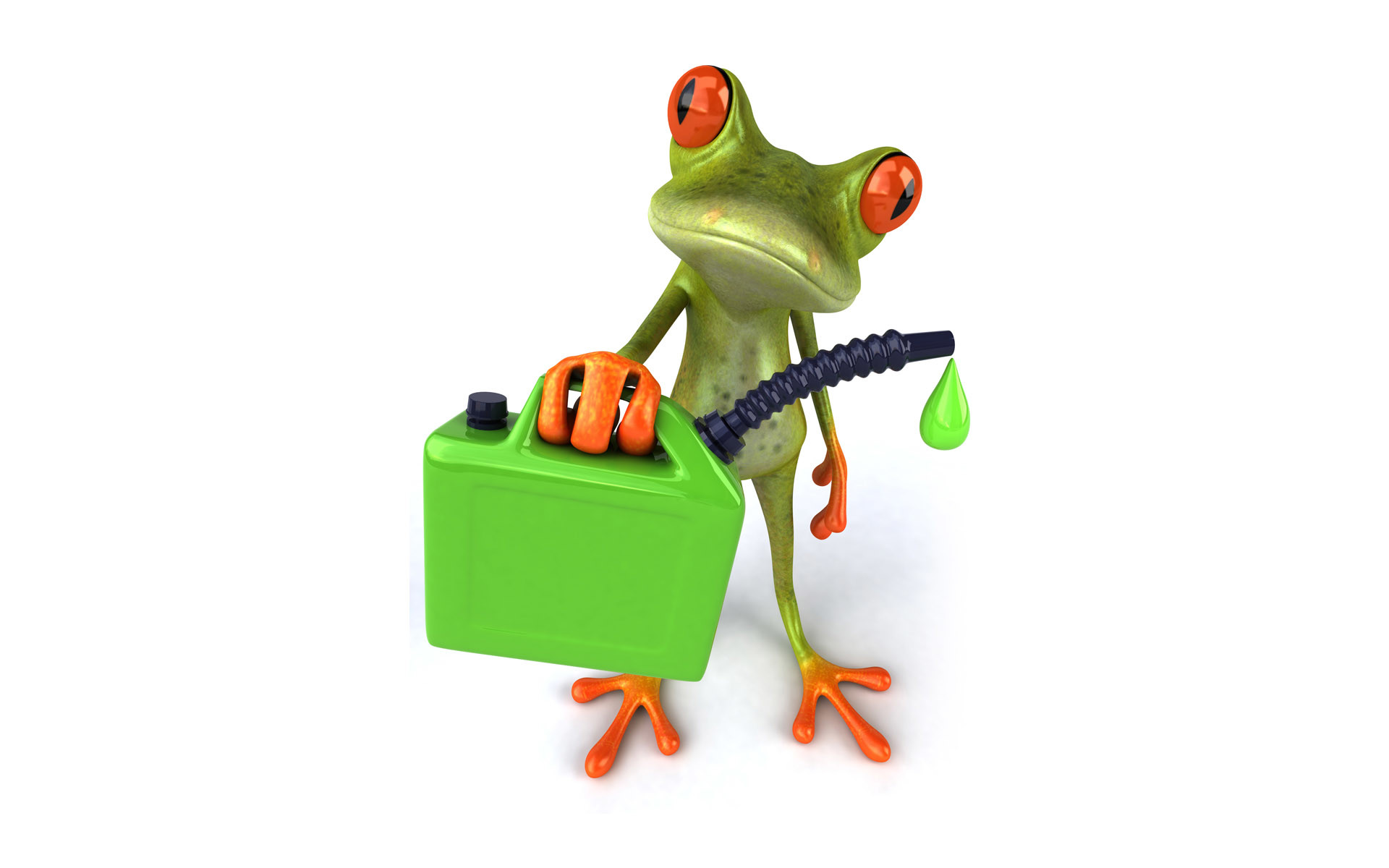 Images In High Quality – Cartoon Frog by Xavier Beachem