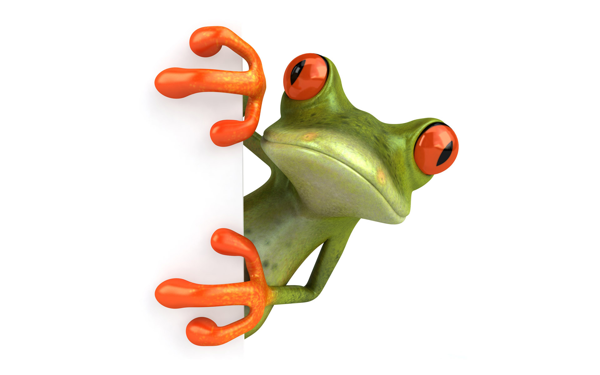 3D-Green-and-Orange-Frog-Watching-Animals-Wallpapers
