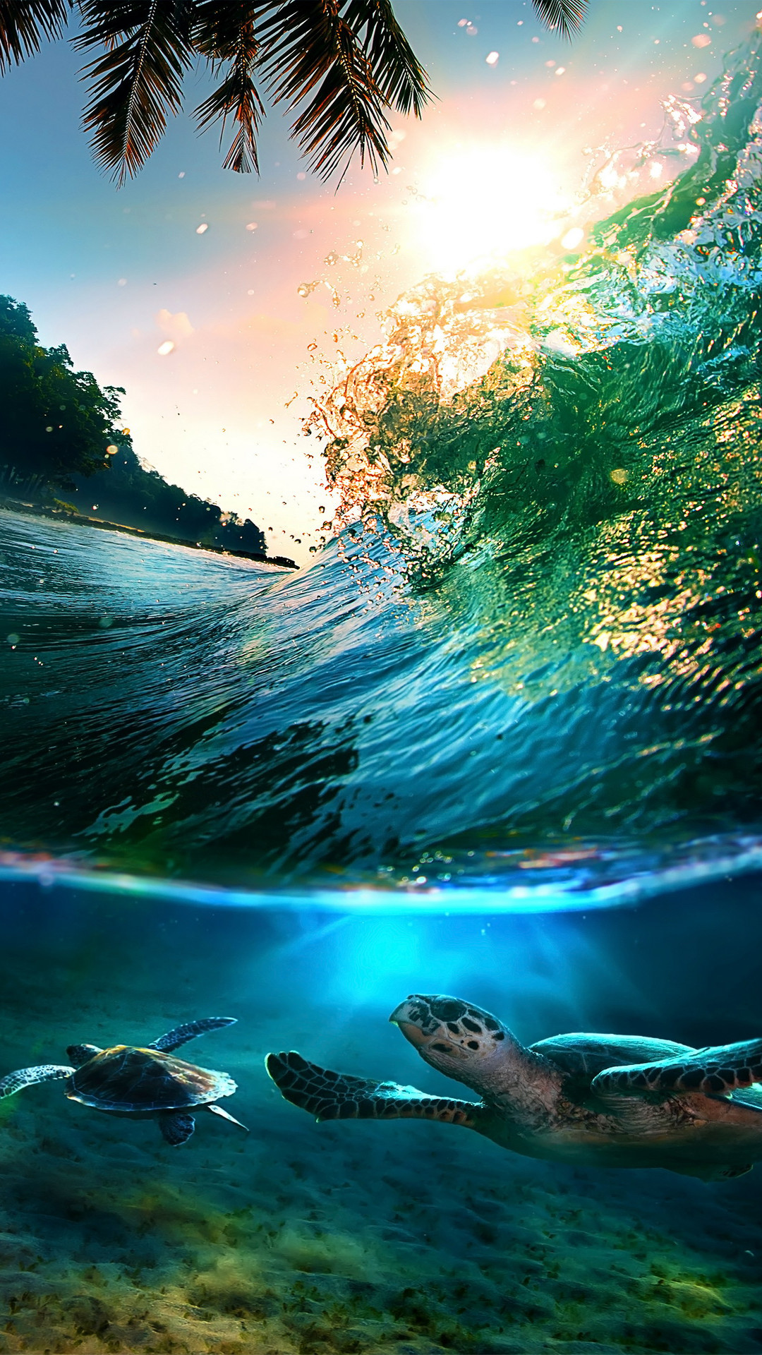 Tropical Sea Island Turtles – High quality htc one wallpapers and abstract  backgrounds designed by the best and creative artists in the world.