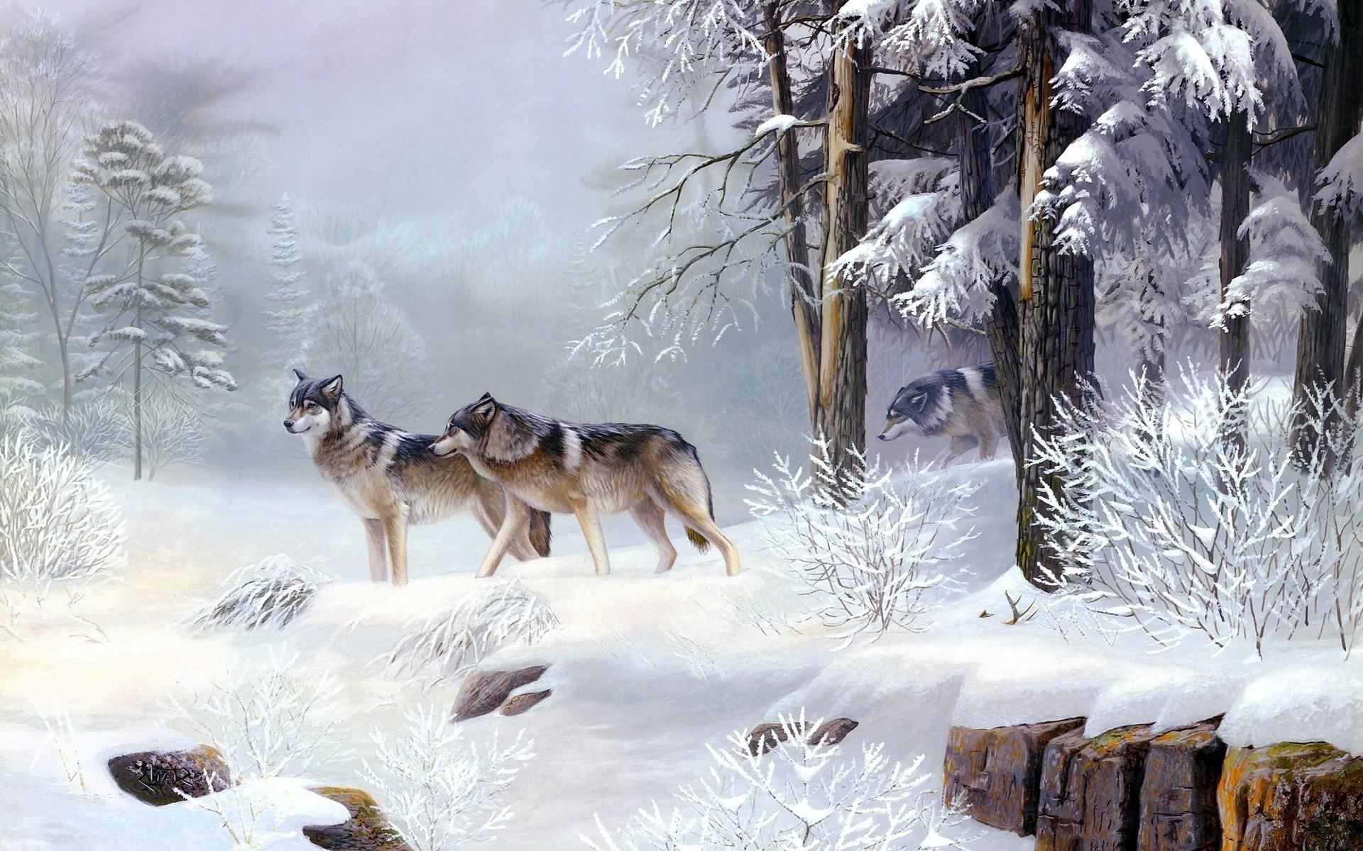 Wolves in the forest Digital Art HD desktop wallpaper, Tree wallpaper, Snow  wallpaper, Forest wallpaper, Wolf wallpaper – Digital Art no.