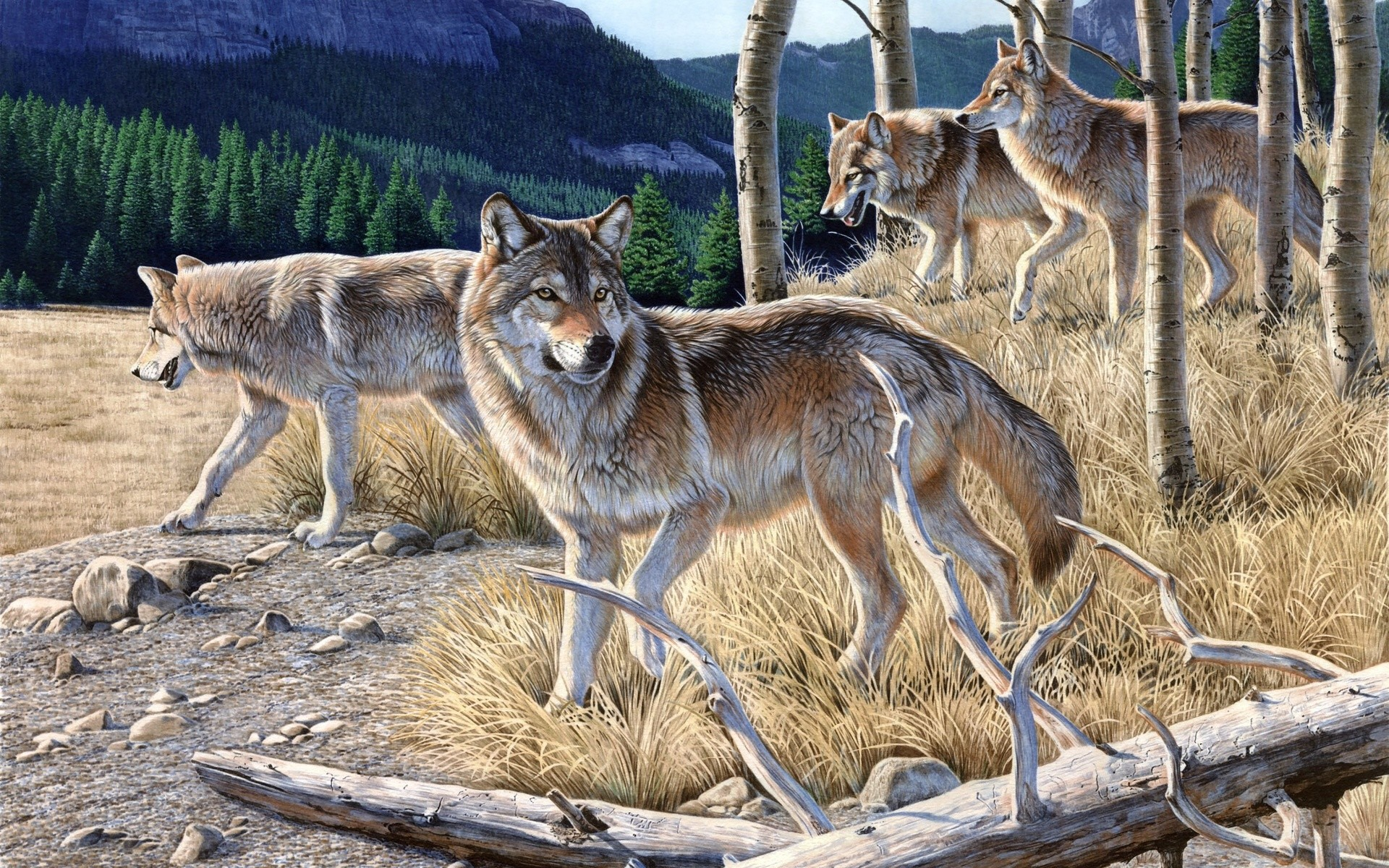 Mountain, Al Agnew, Hungry, Painting, A Pack Of Wolves, Forest,