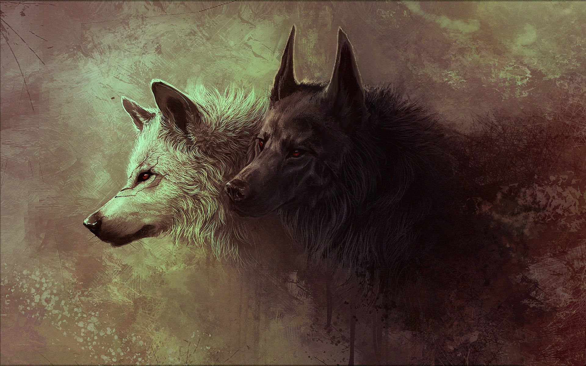 Wallpapers of Wolf HD, 0.71 Mb, Aileen Desir