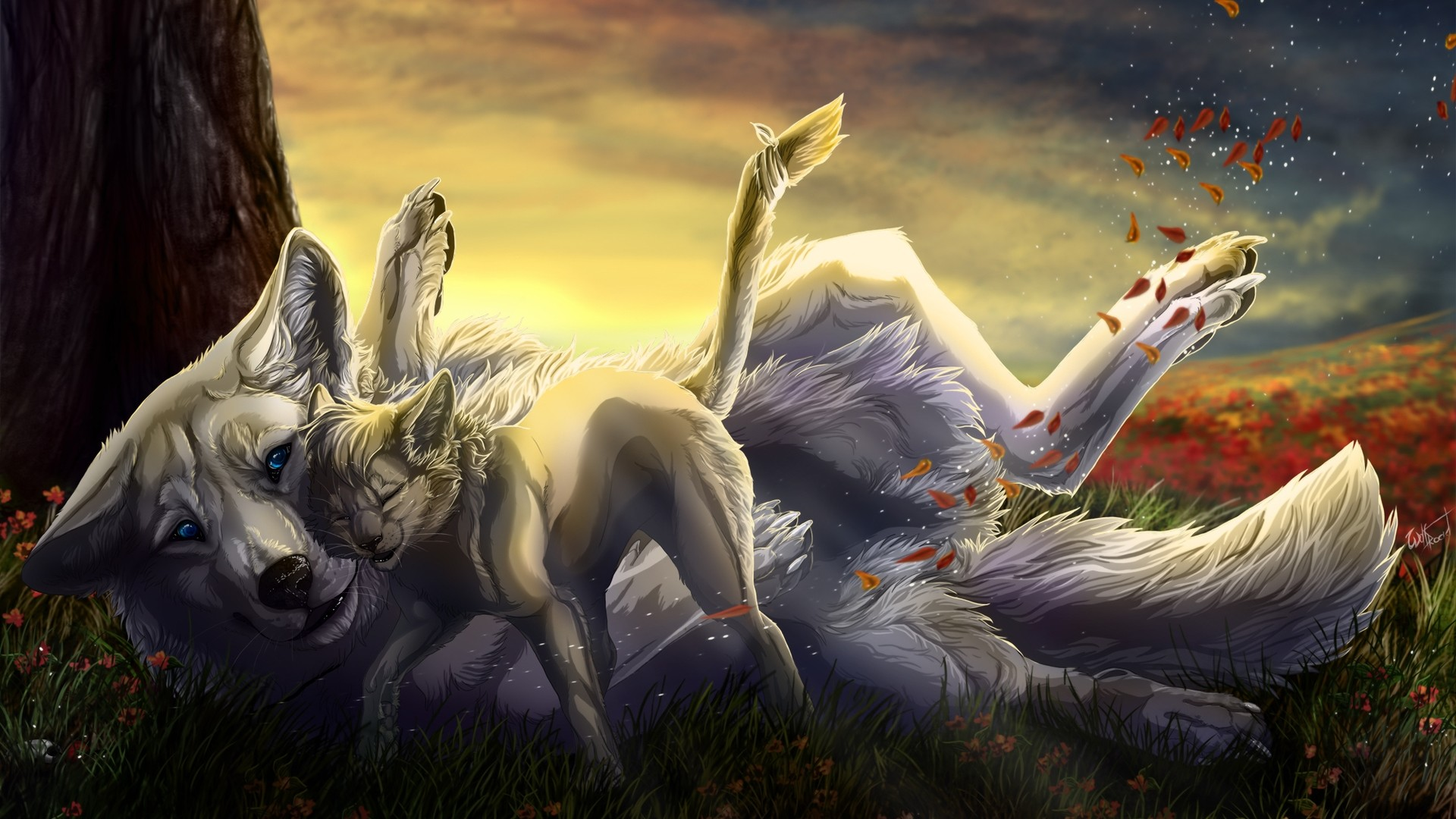hd animated wolf wallpapers