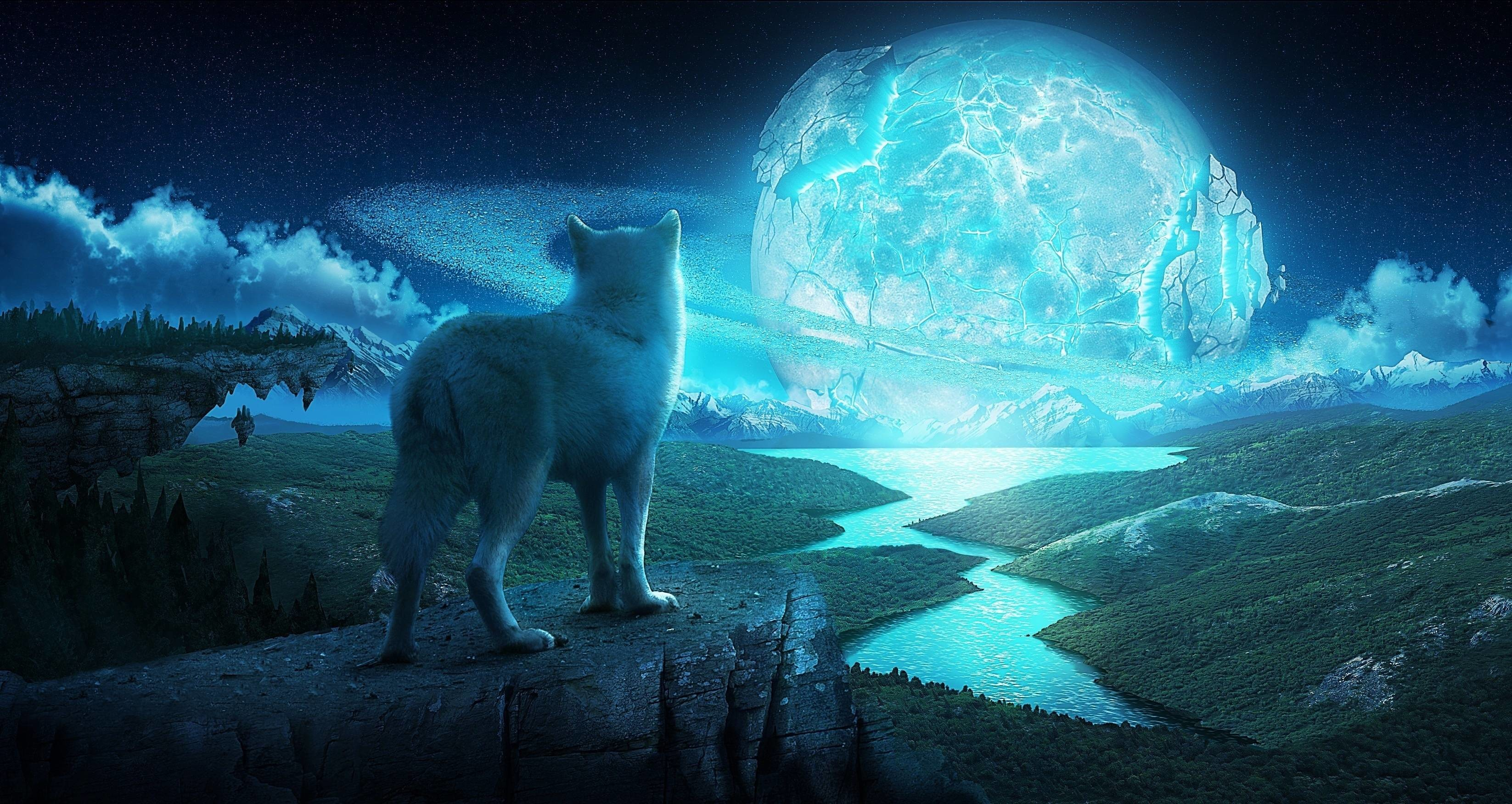 Wallpapers For > Mystical Wolves Wallpaper