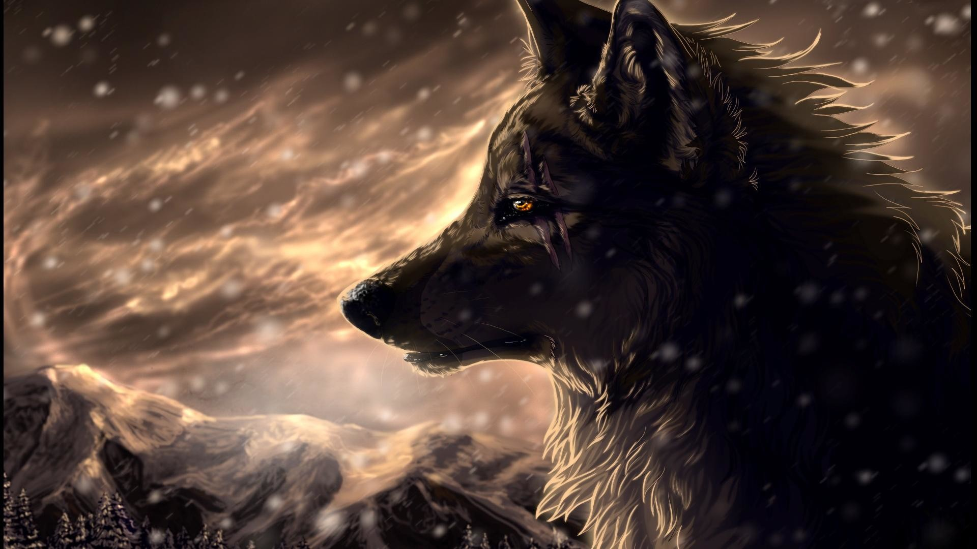 amazing wolf wallpapers. Â«Â« Previous Wallpaper. pictures of wolfs