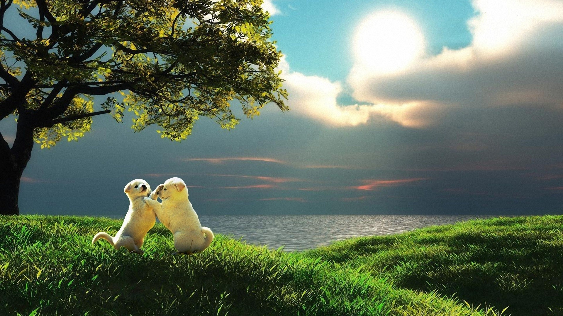 Preview wallpaper puppy, couple, sunset, nature, play, kids 1920×1080