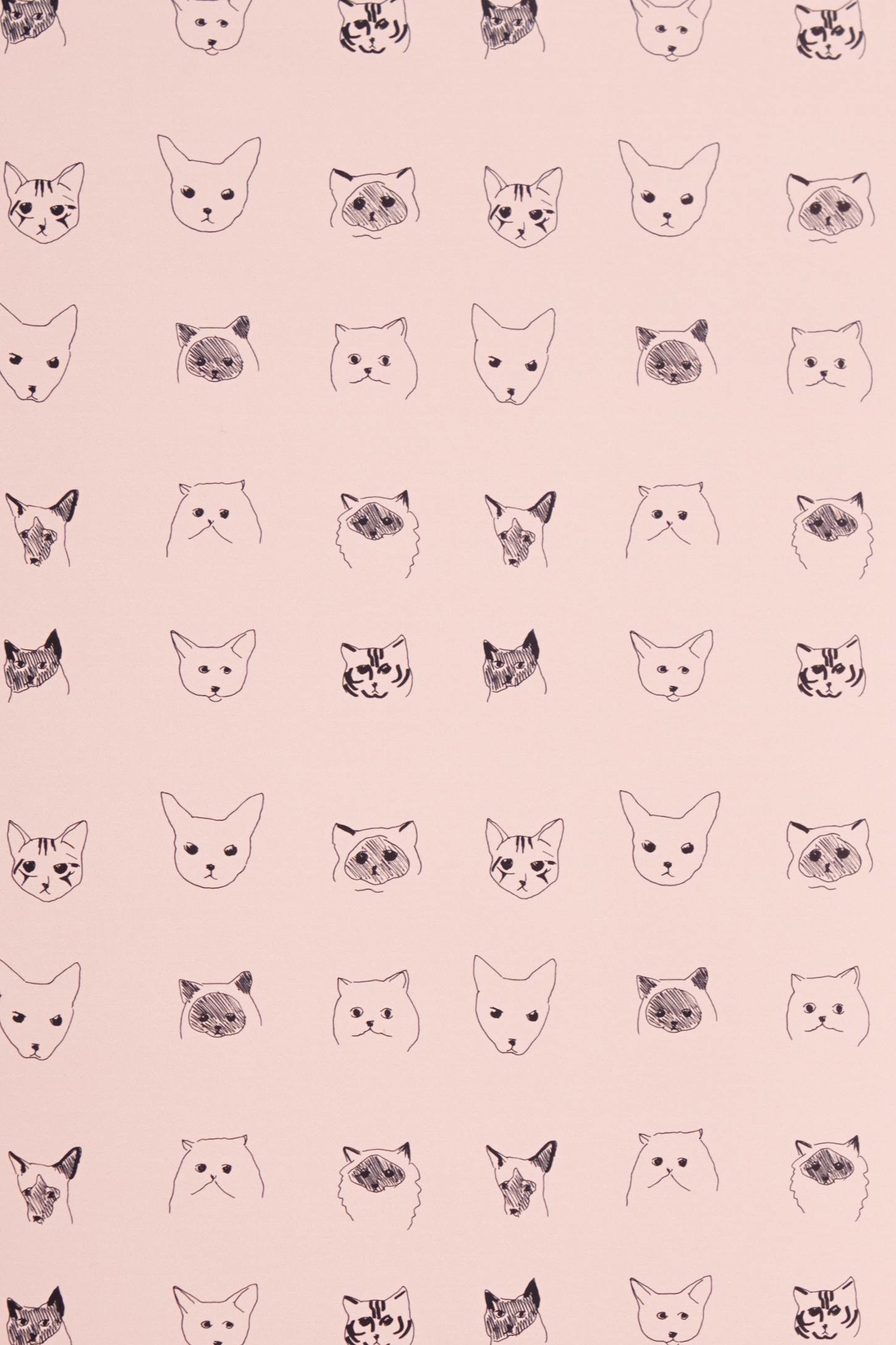 Cat & Dog Wallpaper by Baines & Fricker: too much Crazy Cat Lady?