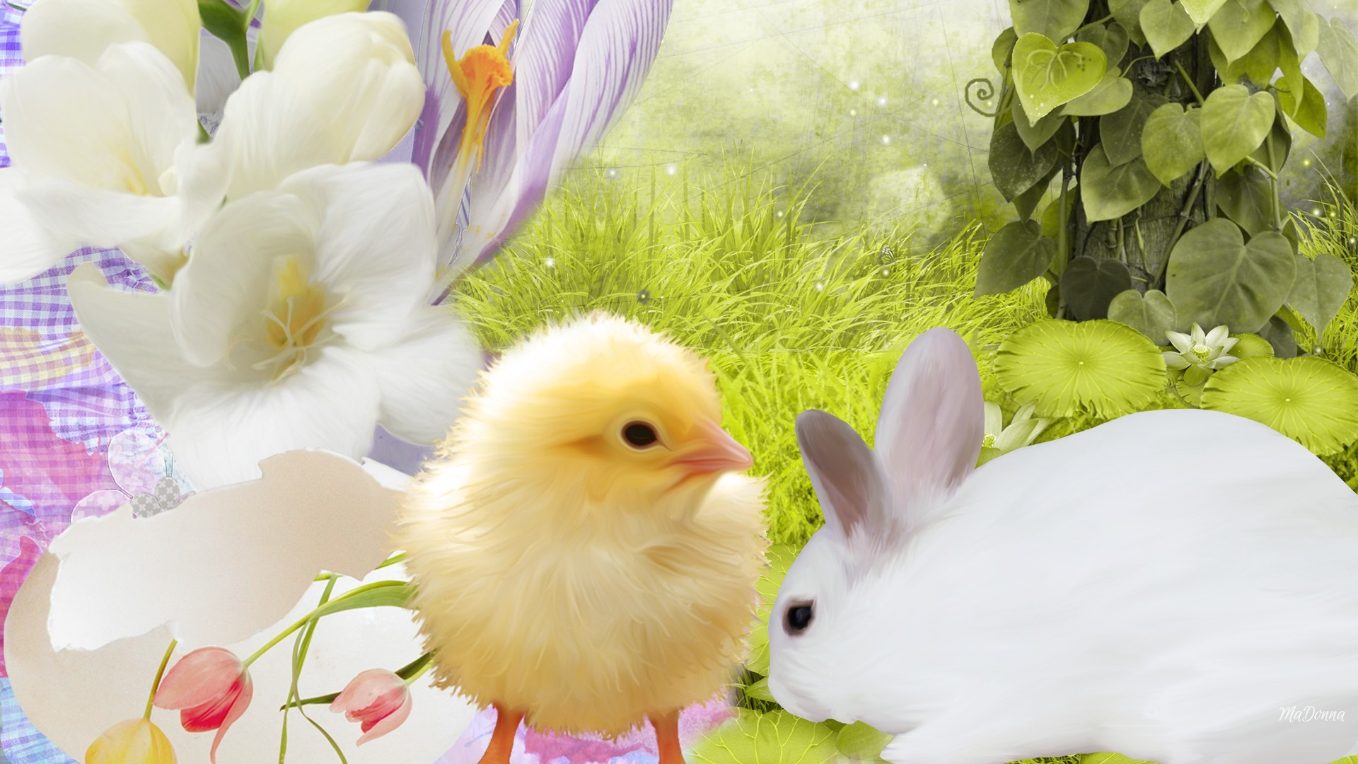 bunny_chick_easter_rabbit_chicken_grass_hd-wallpapers