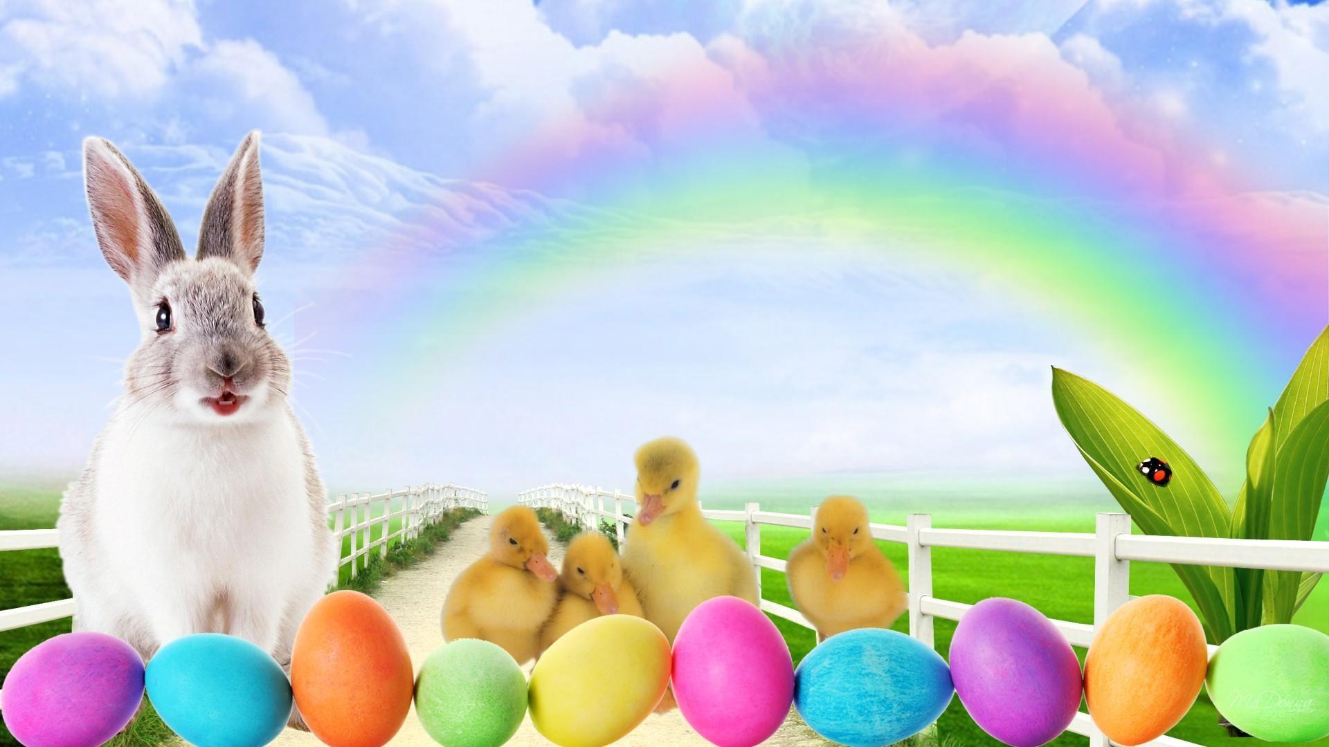 Easter Bunny Wallpaper (01)