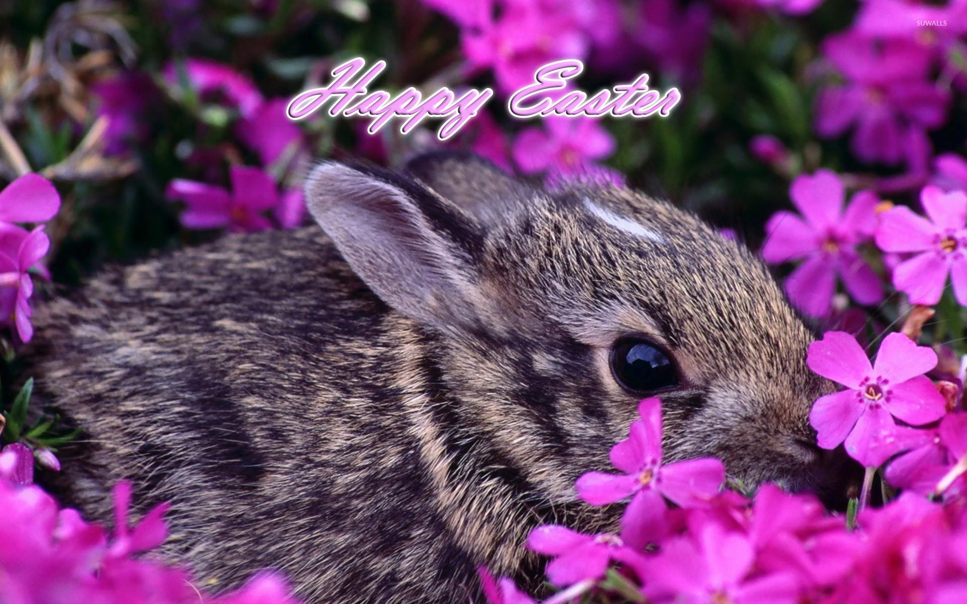Easter bunny [6] wallpaper