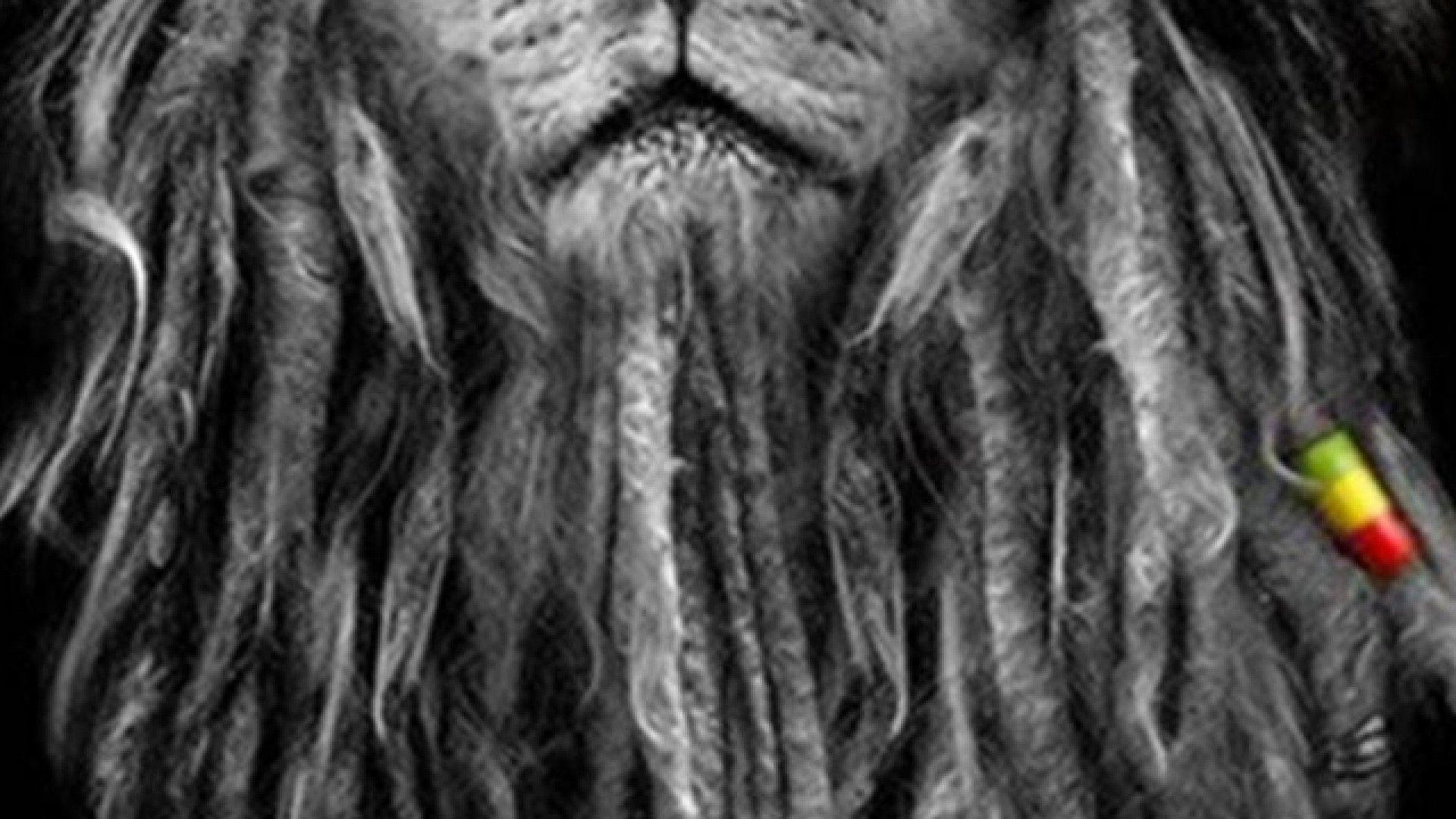 My Top Collection: Rasta lion wallpaper Rasta Lion Wallpapers Wallpapers)