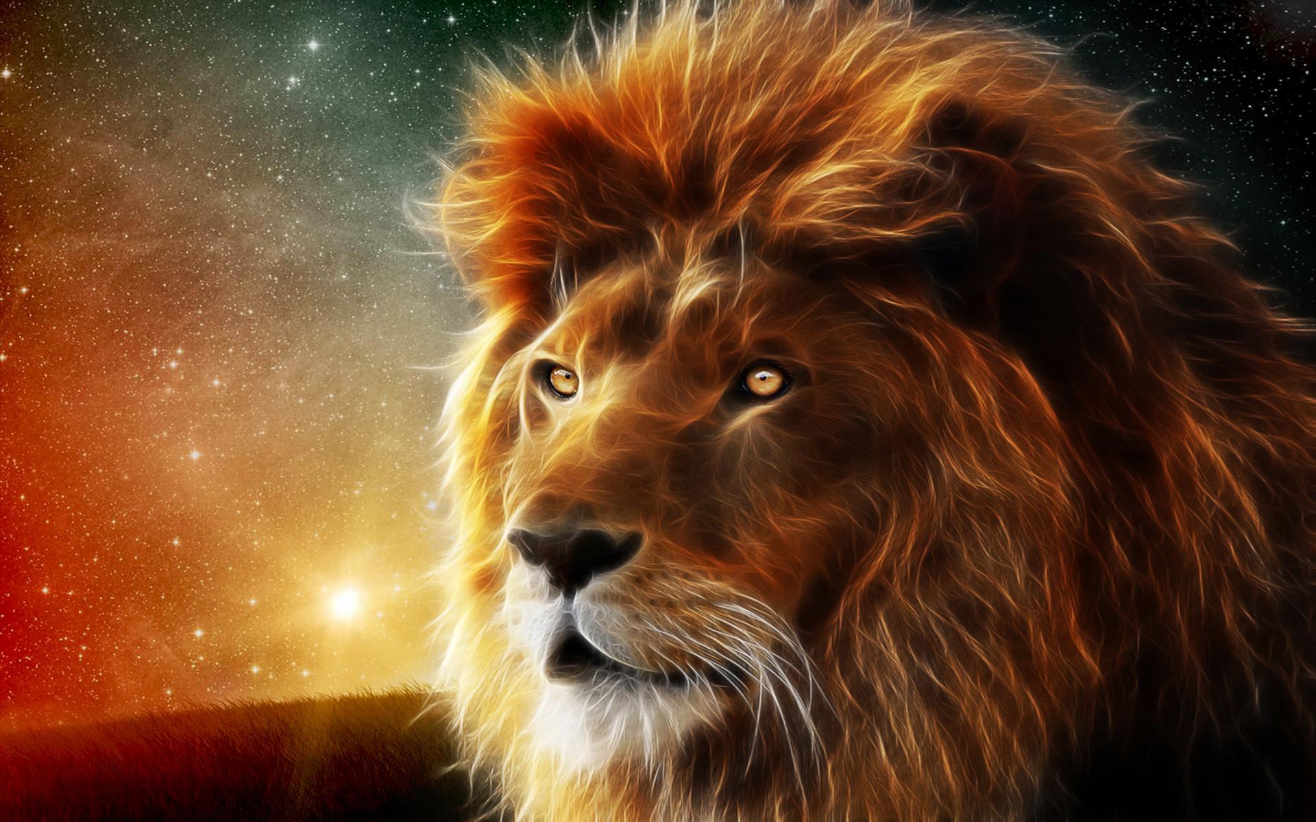 Lion Wallpaper Photo …