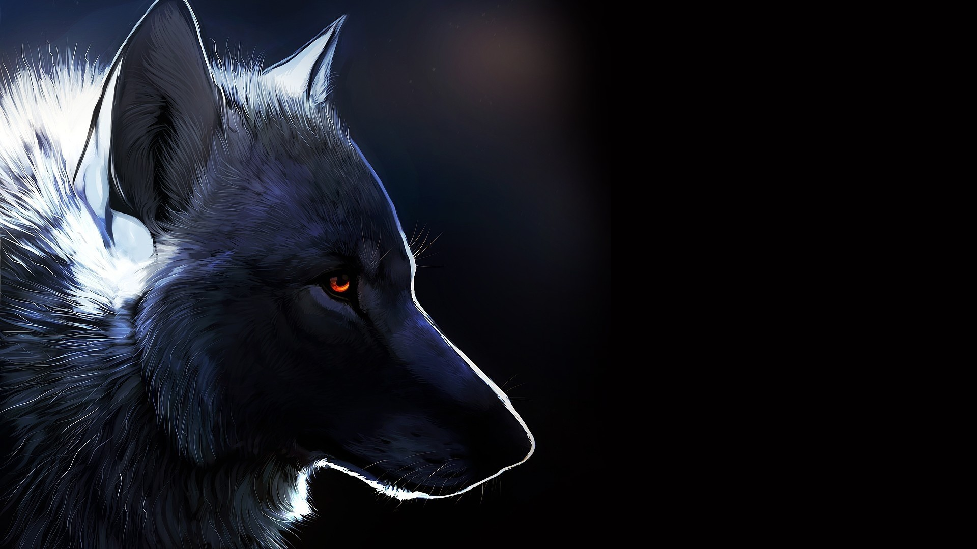Black Wolf Picture As Wallpaper HD