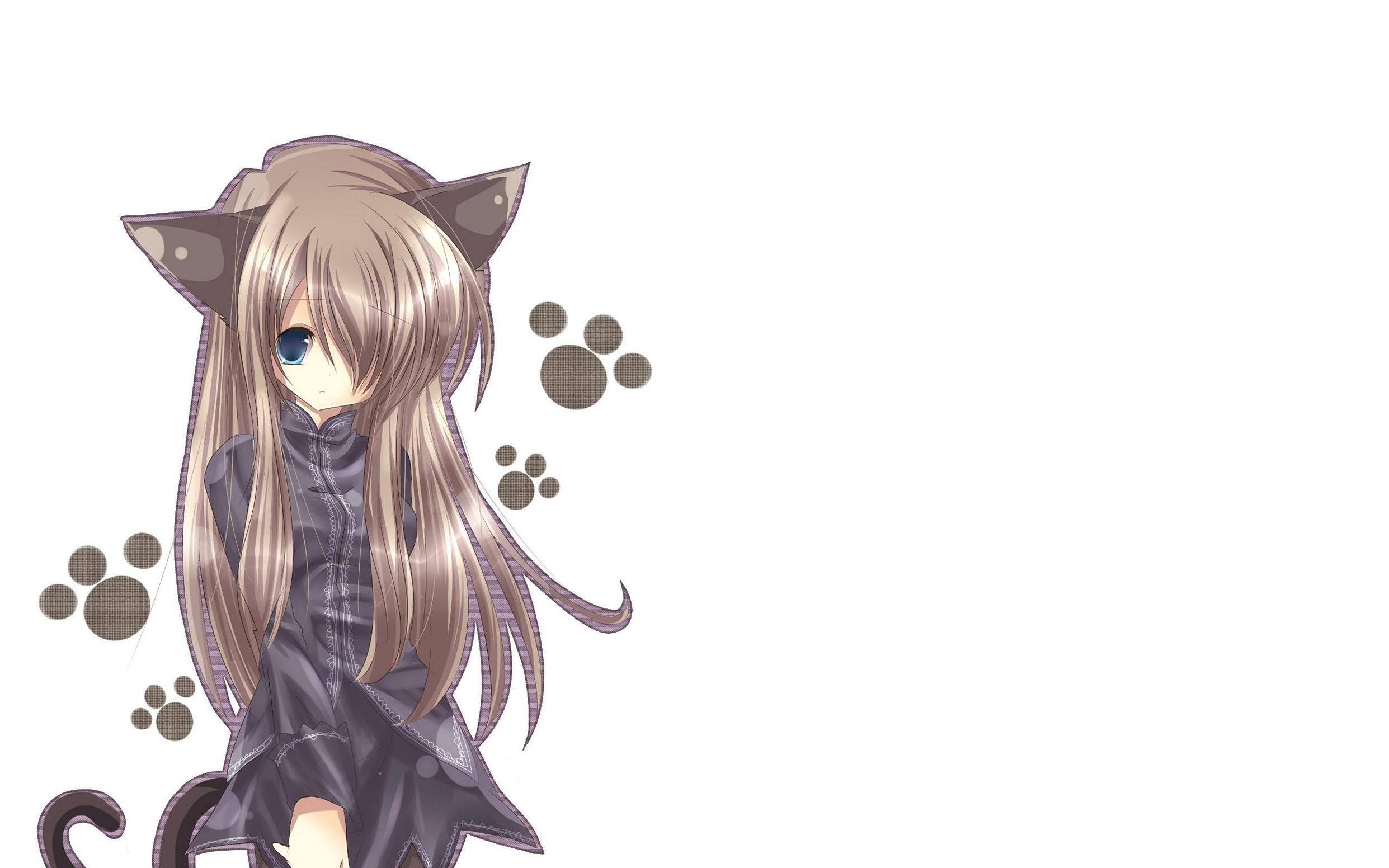 Cat Girl Nekomimi Art Girl Superb Anime Wallpapers Hd