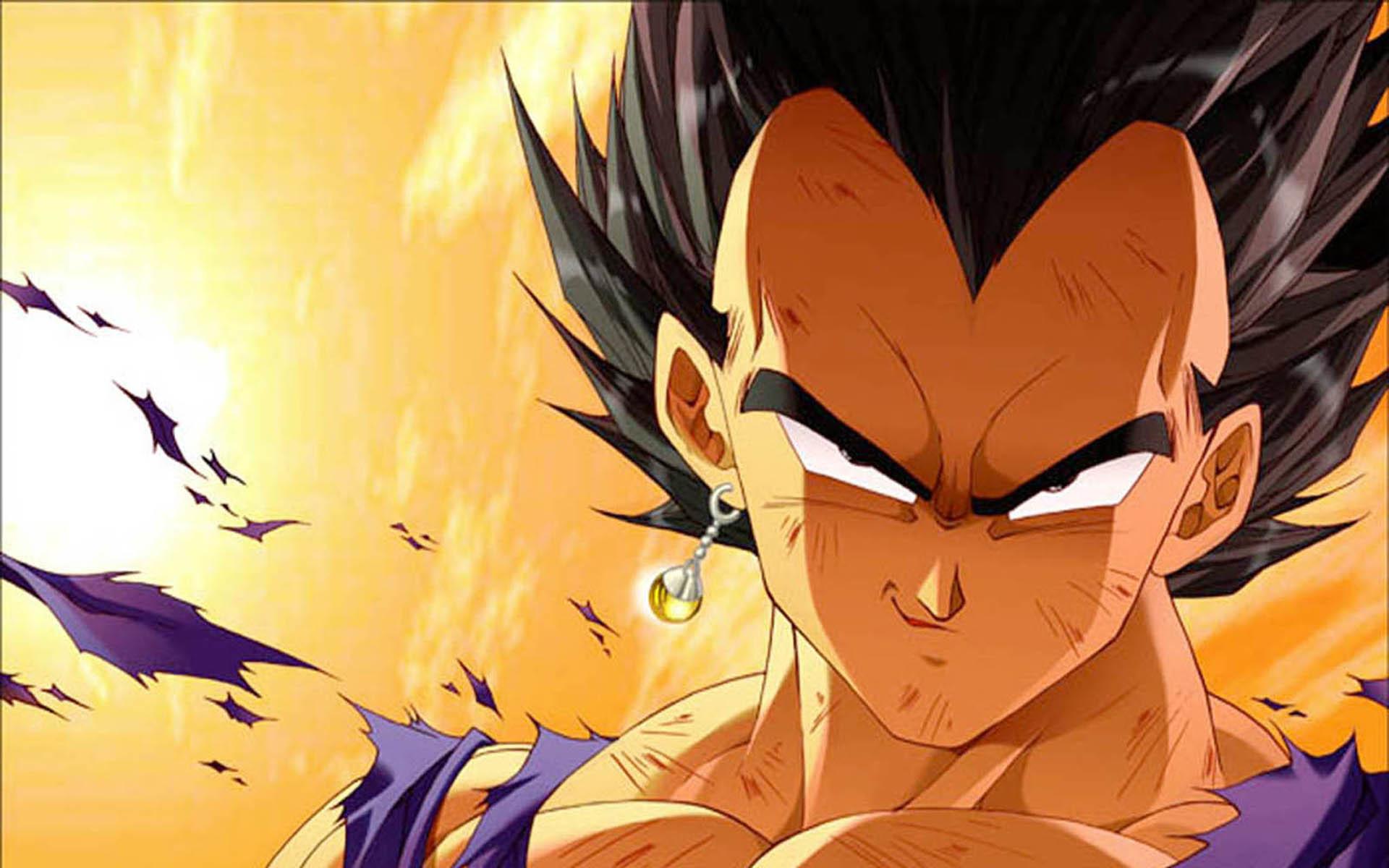 Dragon Ball Z – Vegeta HD Wallpaper   Animation Wallpapers