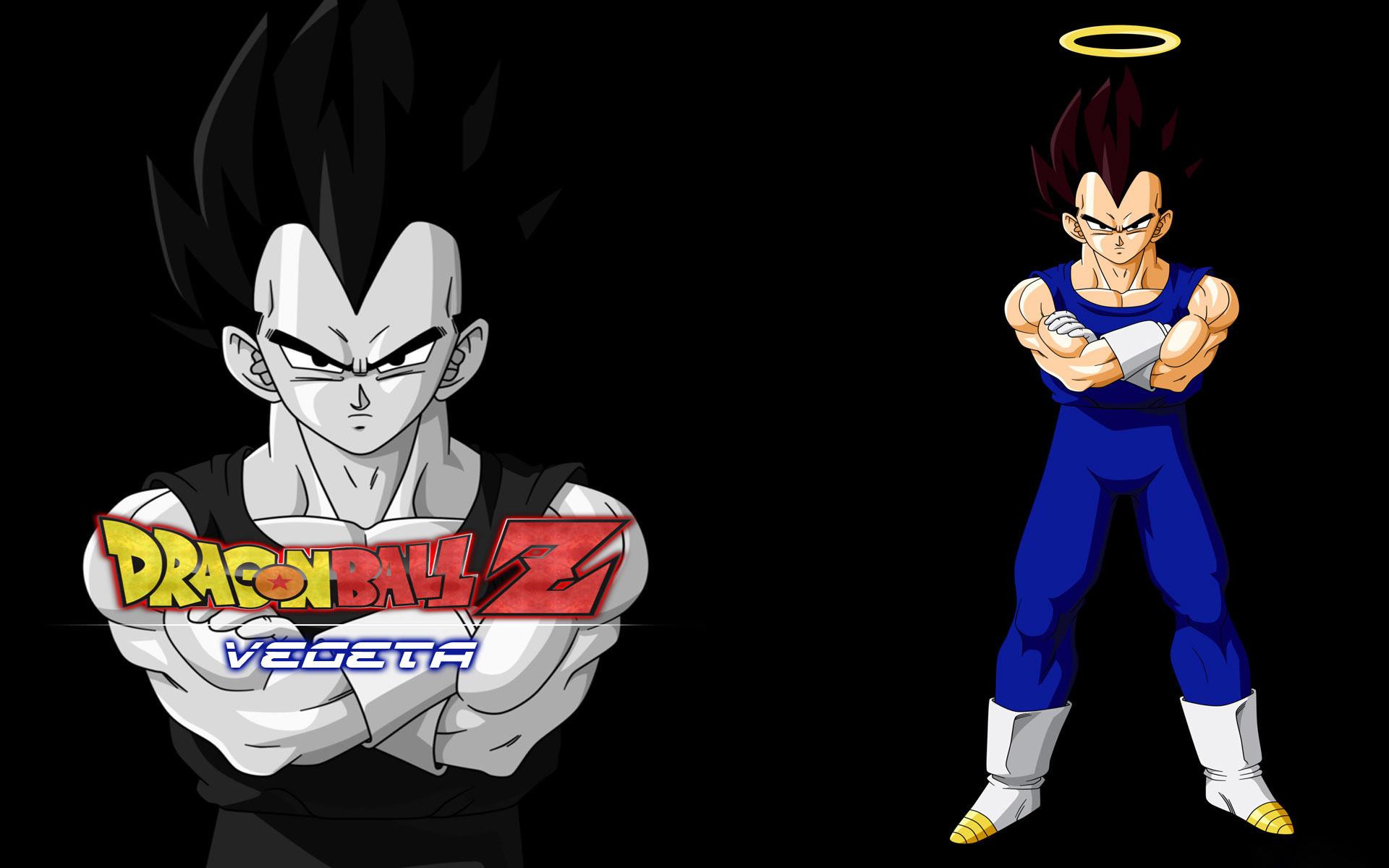 … Vegeta – Dragon Ball Z