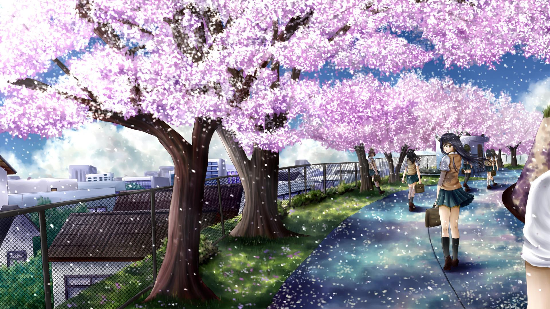 cherry blossoms, ilolamai, seifuku.jpg (1920×1080) | 1アニメ壁紙 | Pinterest | Cherry  blossoms, Anime art and Digital art