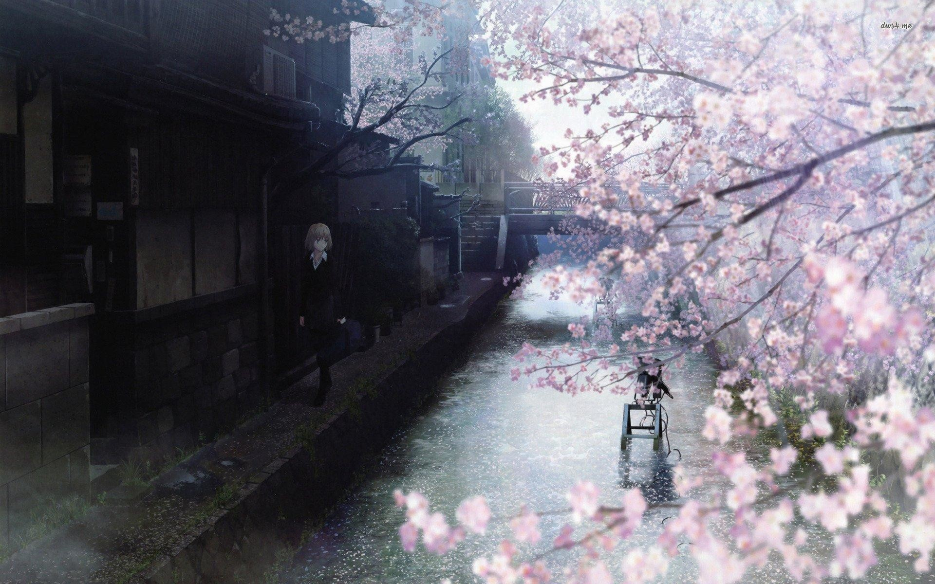 wallpaper.wiki-HQ-Anime-Cherry-Blossom-PIC-WPC004906