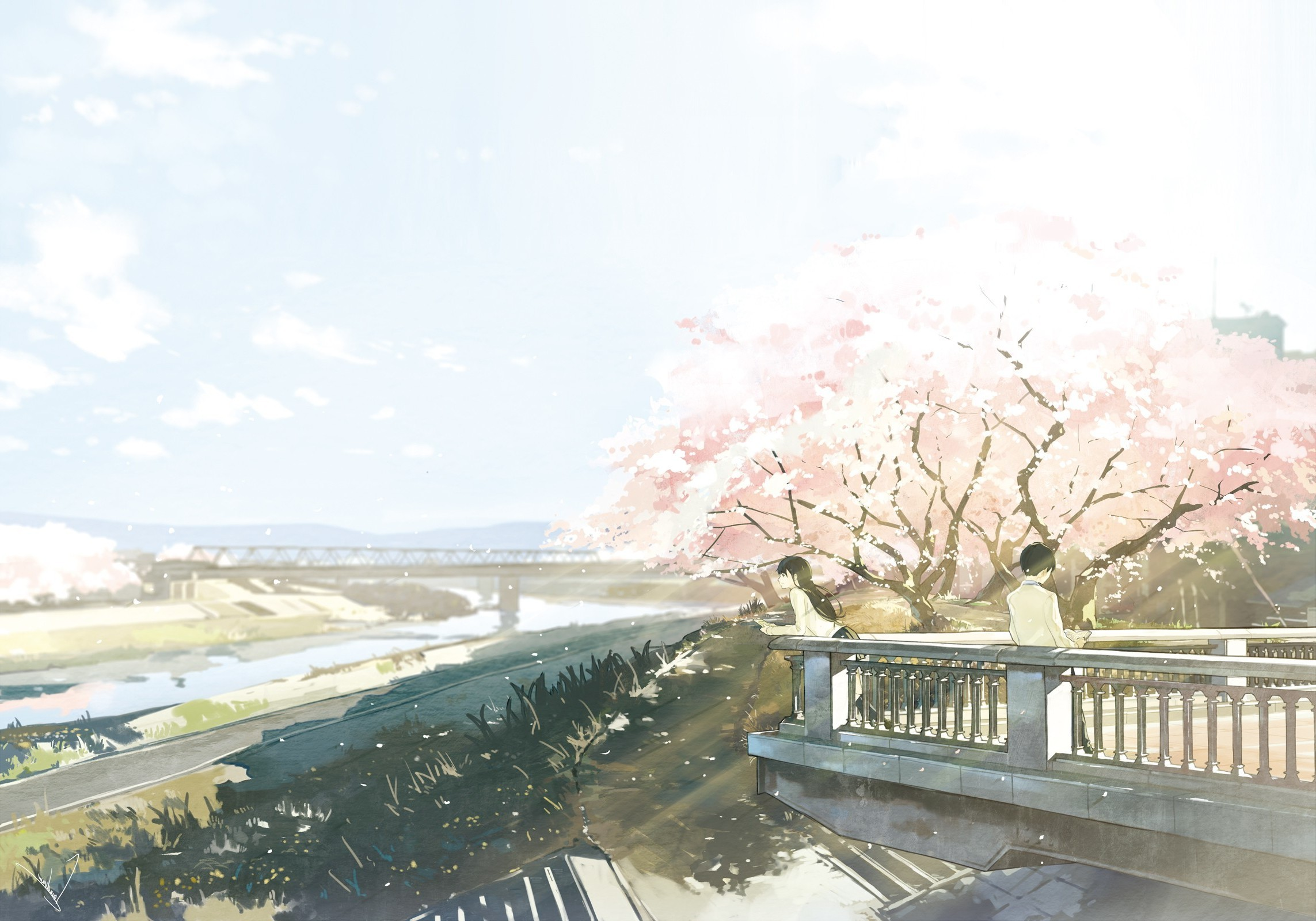 cherry Blossom, River, Bridge, Anime, Original Characters Wallpapers HD /  Desktop and Mobile Backgrounds