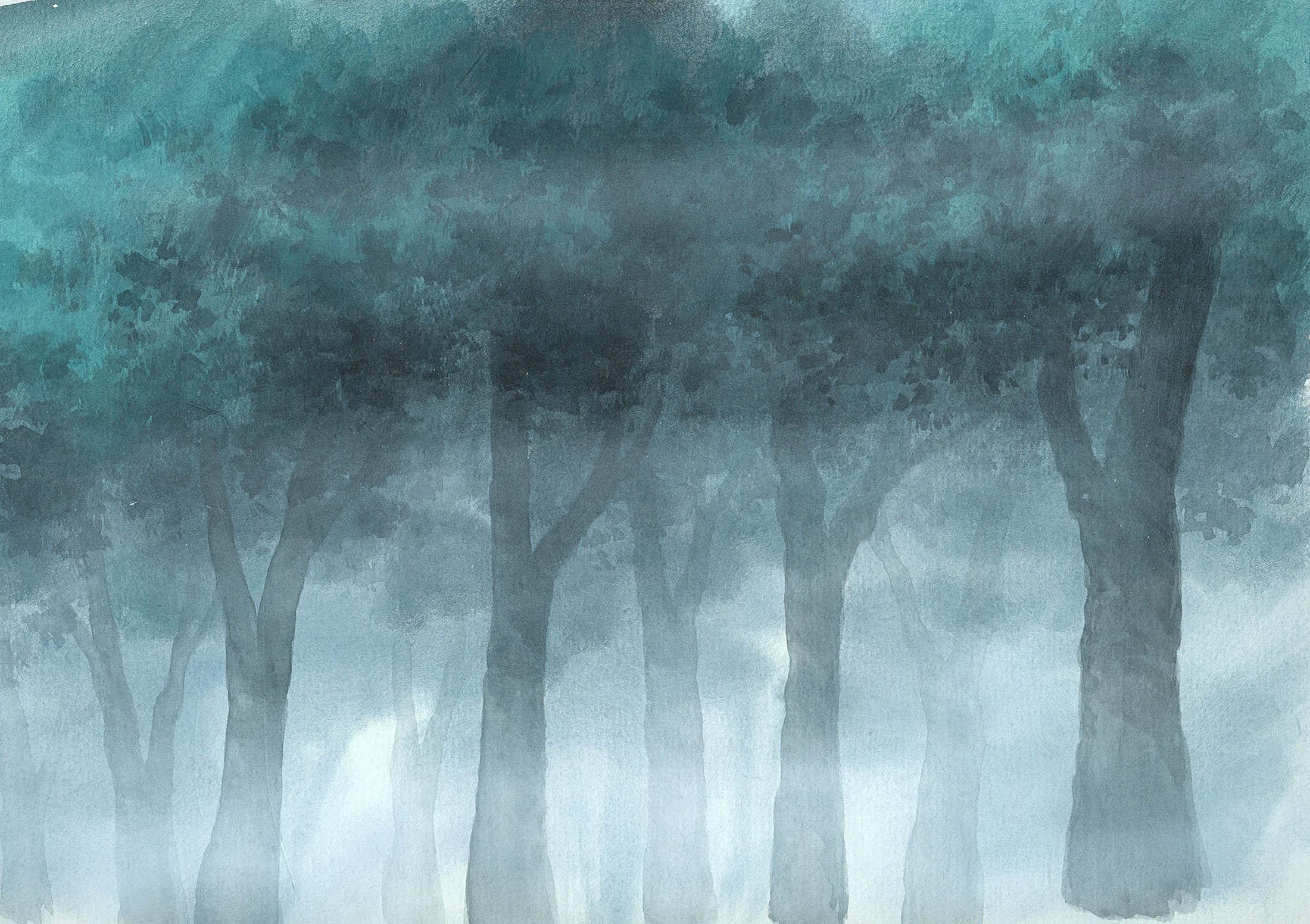 Misty Forest 3 2200 x 1552 Krafty