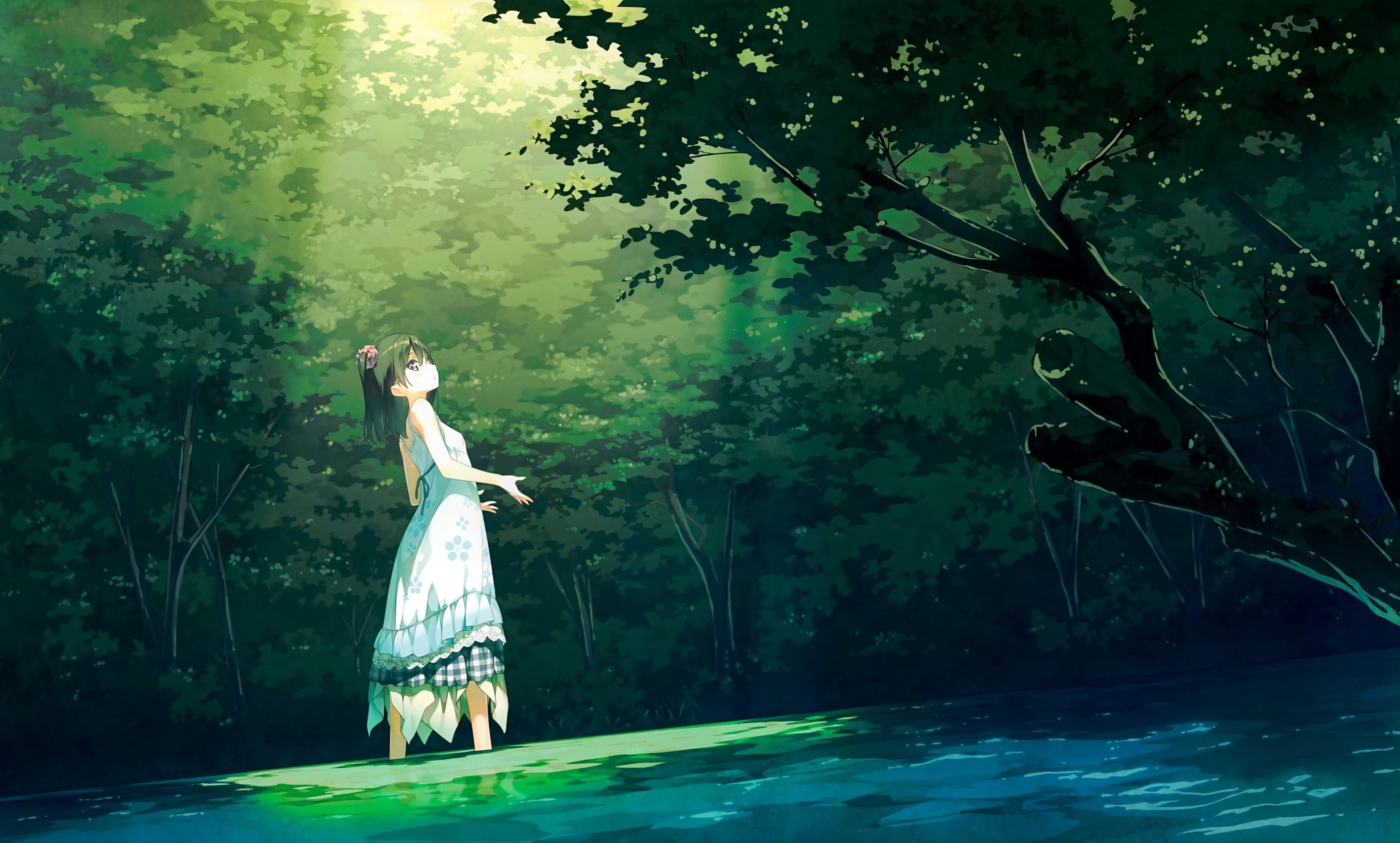 anime Girls, Afterschool Of The 5th Year, Kantoku, Shizuku (Kantoku), Forest,  Dress, Black Hair, Short Hair, Trees Wallpapers HD / Desktop and Mobile …