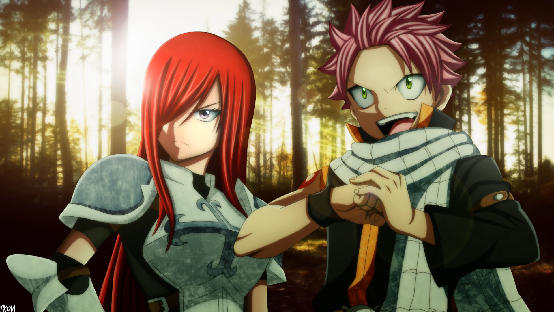 natsu dragneel and erza scarlet fairy tail anime