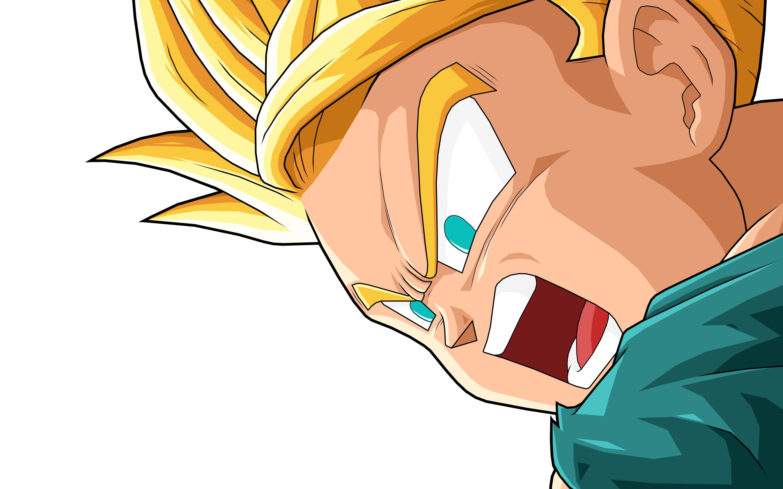 Dragon Ball Z Gohan · HD Wallpaper   Background ID:651910
