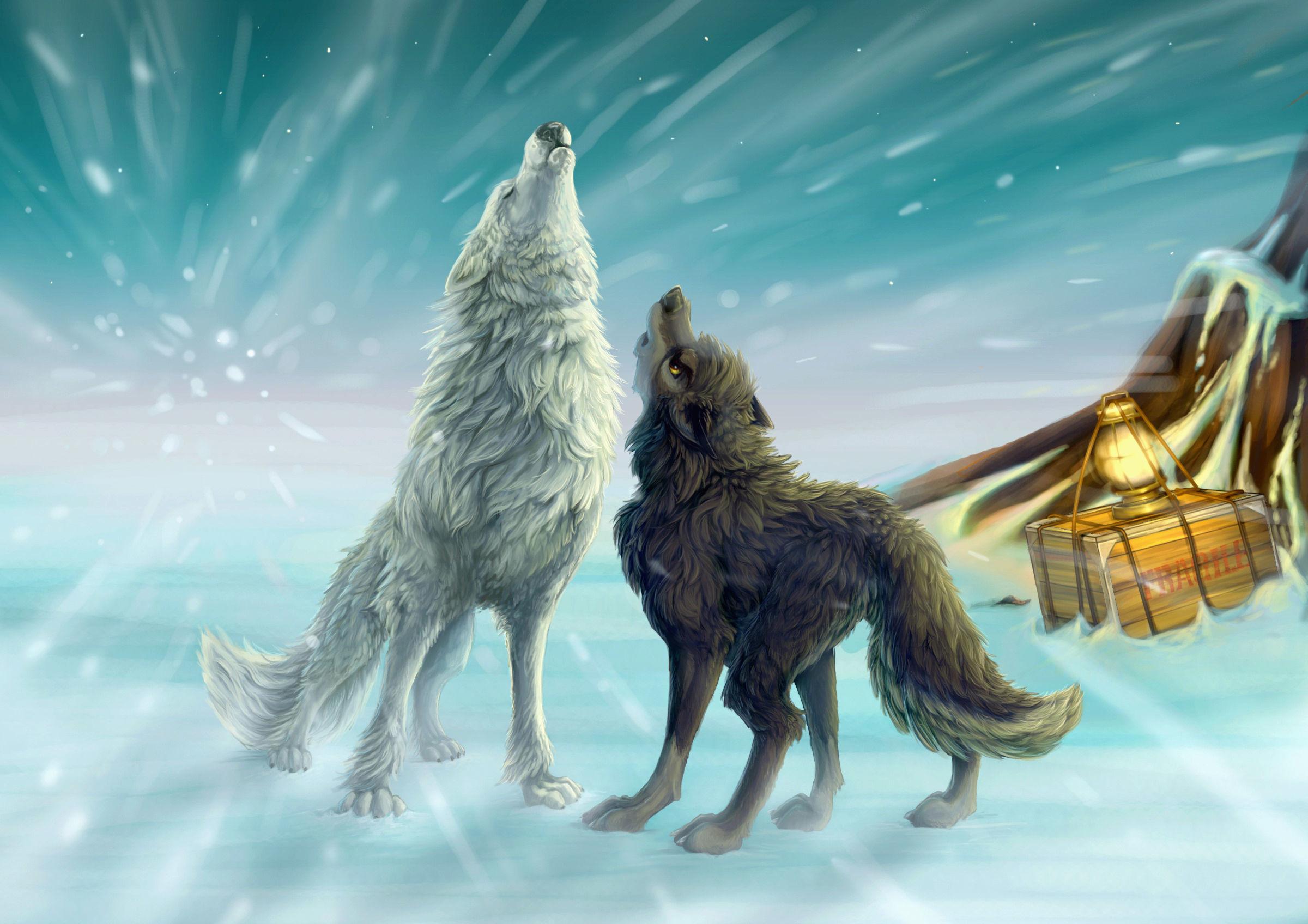 cartoon wolf pictures wallpaper