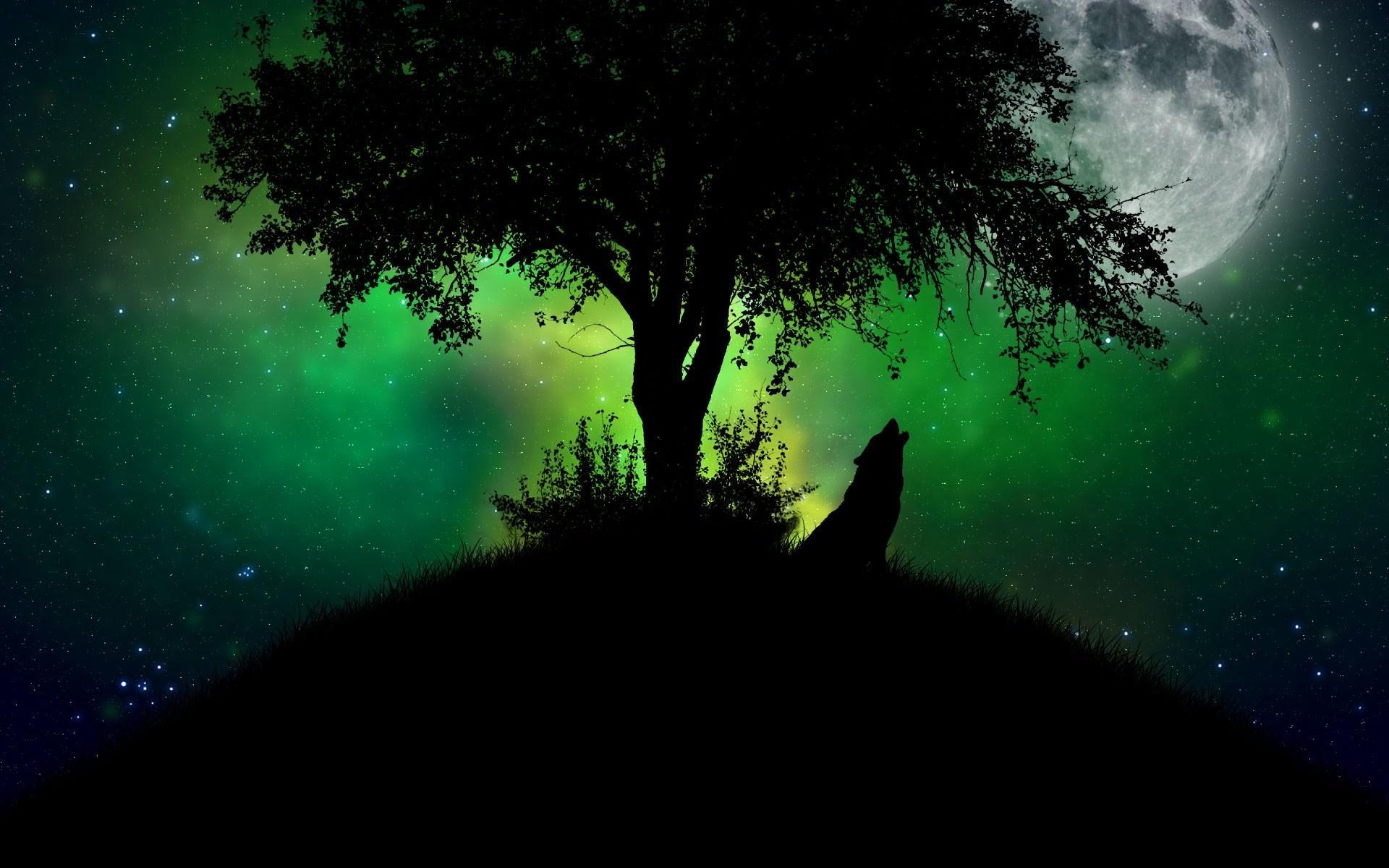 Wolf Sound in Dark Night Wallpaper