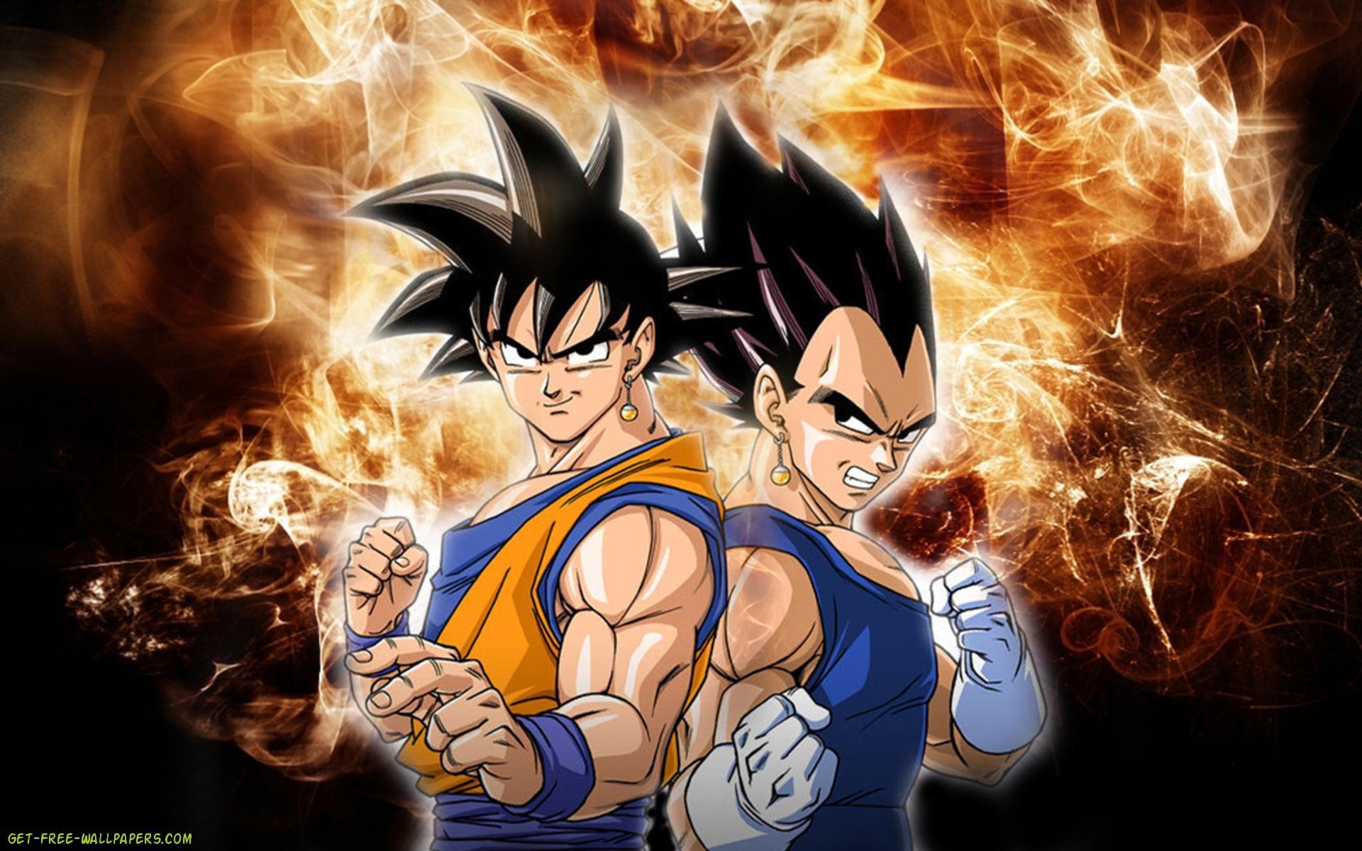 Free Download Vegeta and Goku Dragon Ball Z Wallpaper .