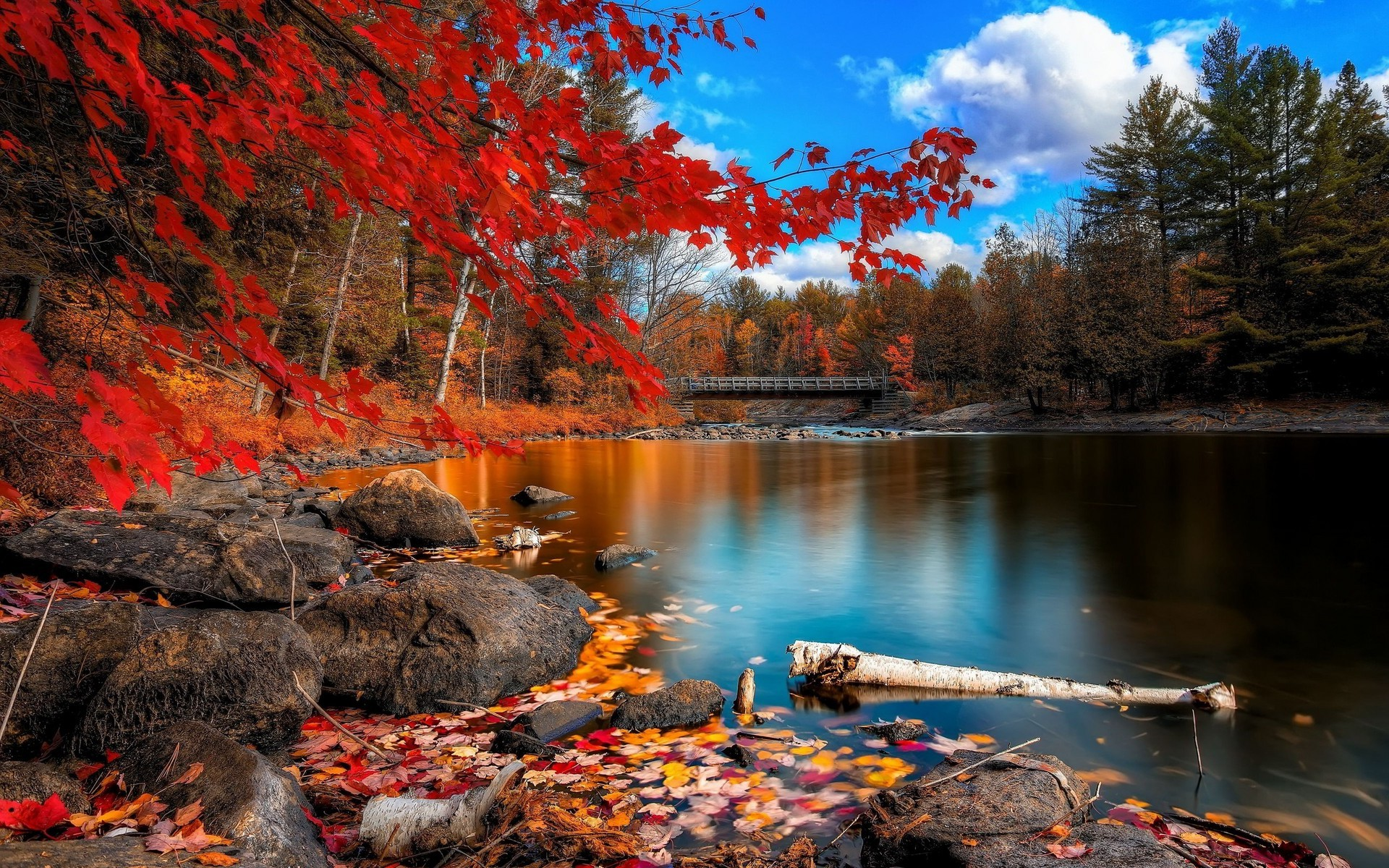 anime, Fall, Nature, Lake Wallpapers HD / Desktop and Mobile Backgrounds