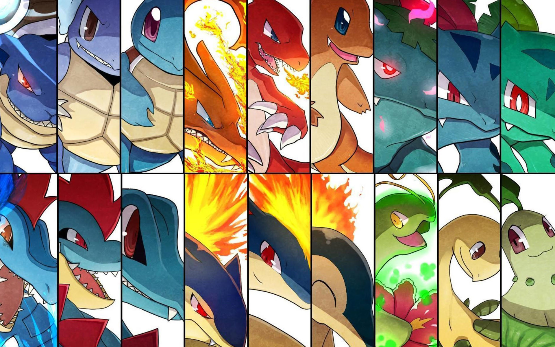 Day Favorite Starter Pokemon I love almost all the starters, but i choose  the first and second generation, especially Charmander and Cyndaquile