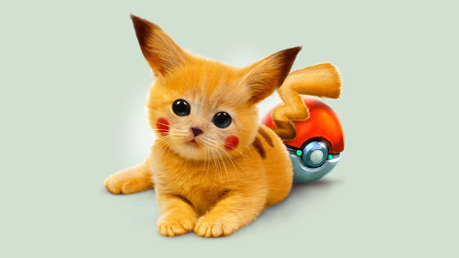 … aggression; art, kitty, pokemon