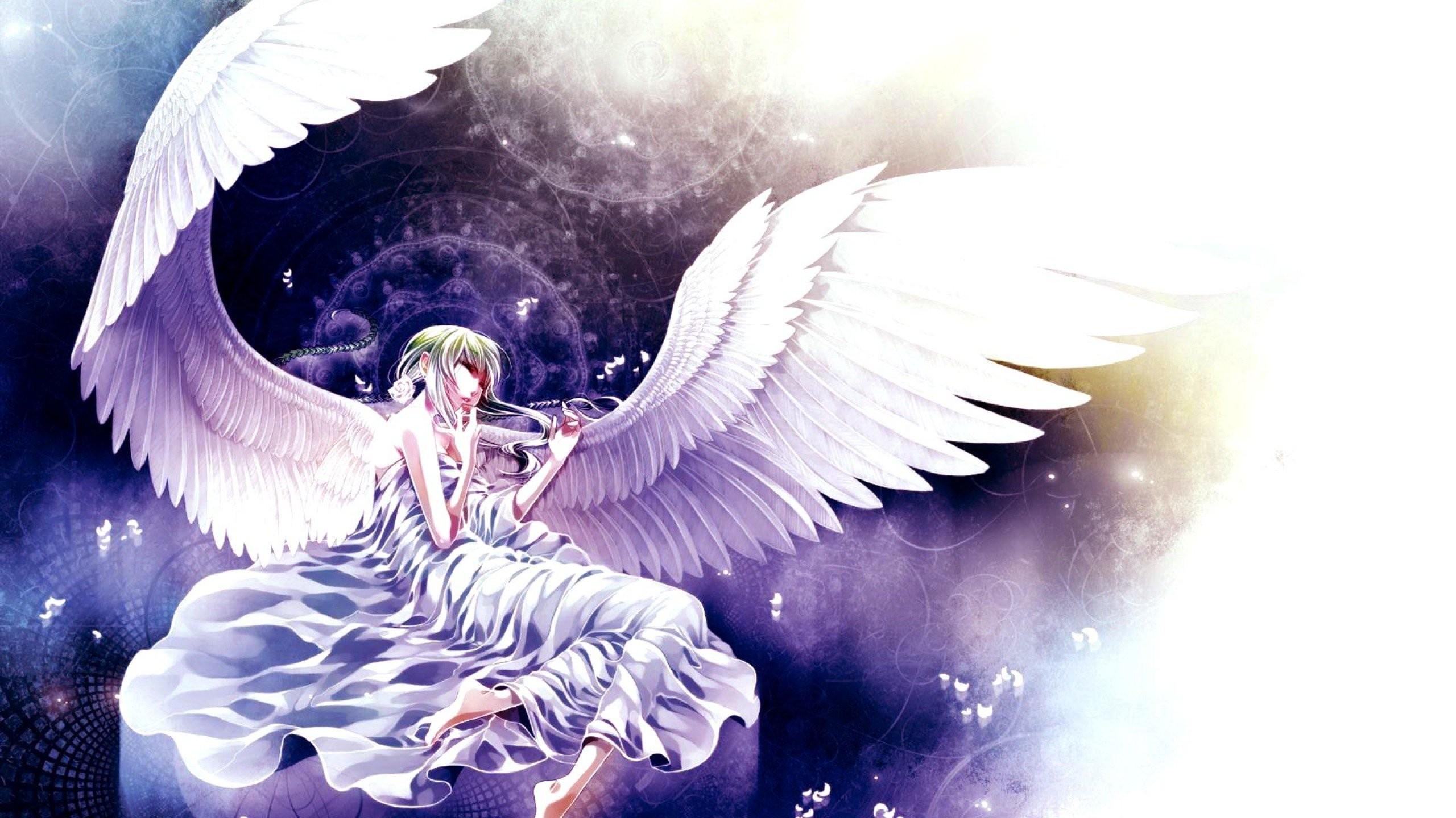 Anime Girl Angel 877022