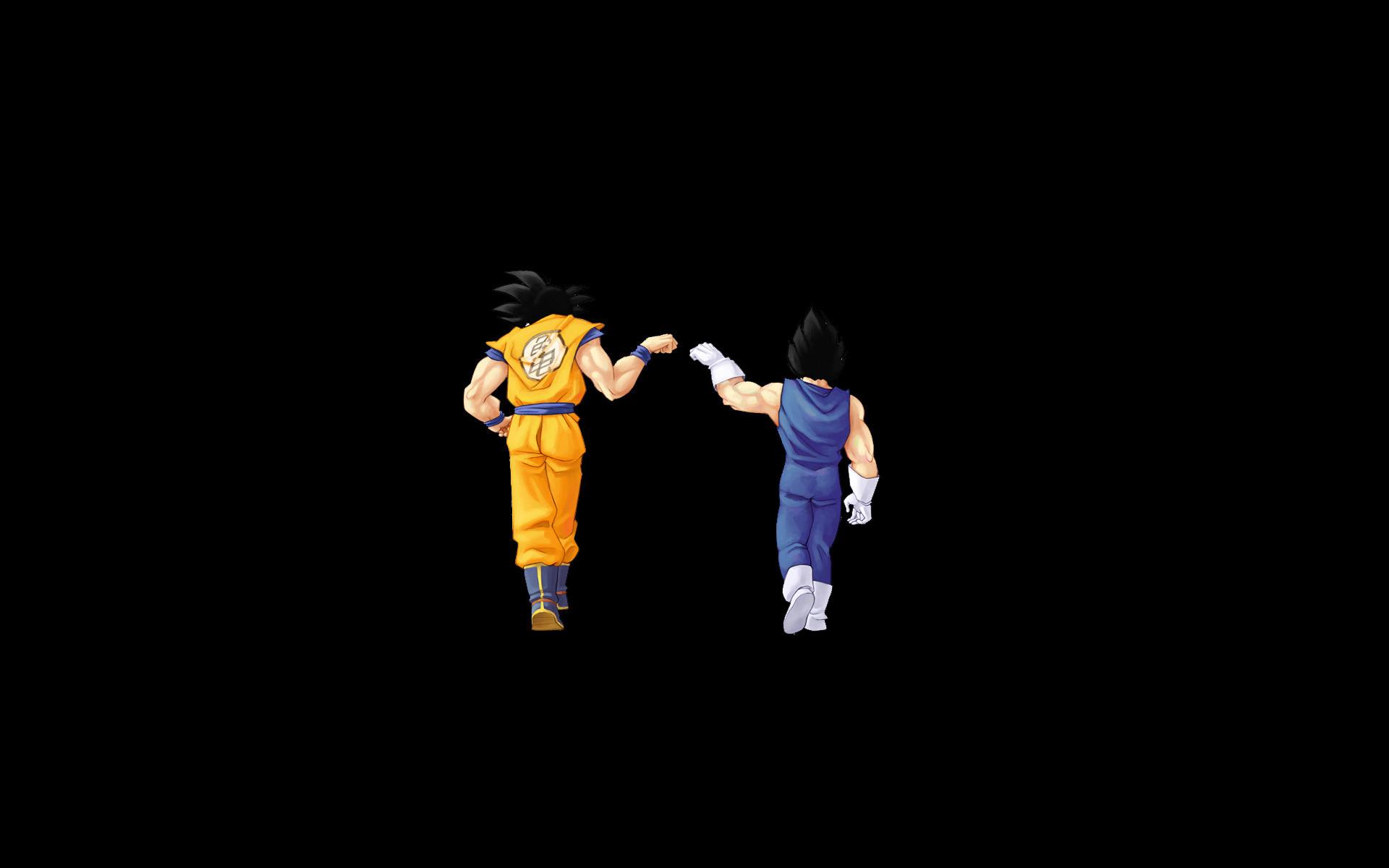 … Goku and Bardock – Dragon Ball Z HD Wallpaper 1920×1200