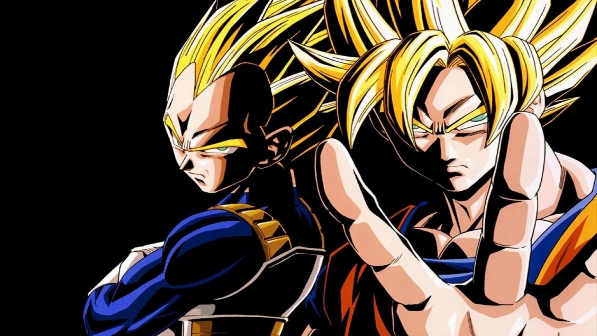 Dragon Ball Z Vegeta & Goku