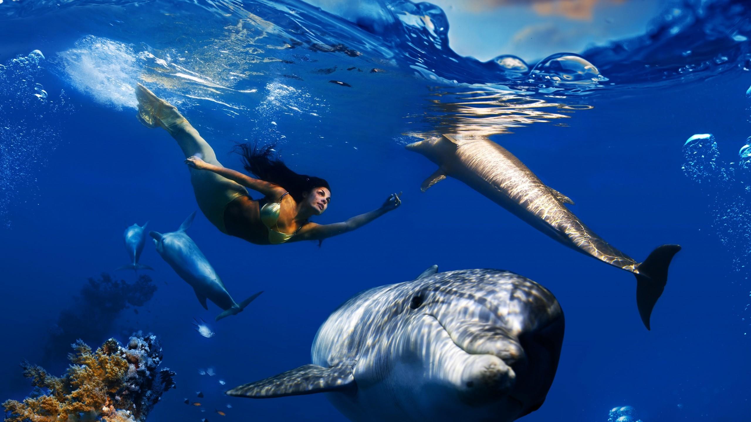 Creative Graphics / Mermaid Wallpaper