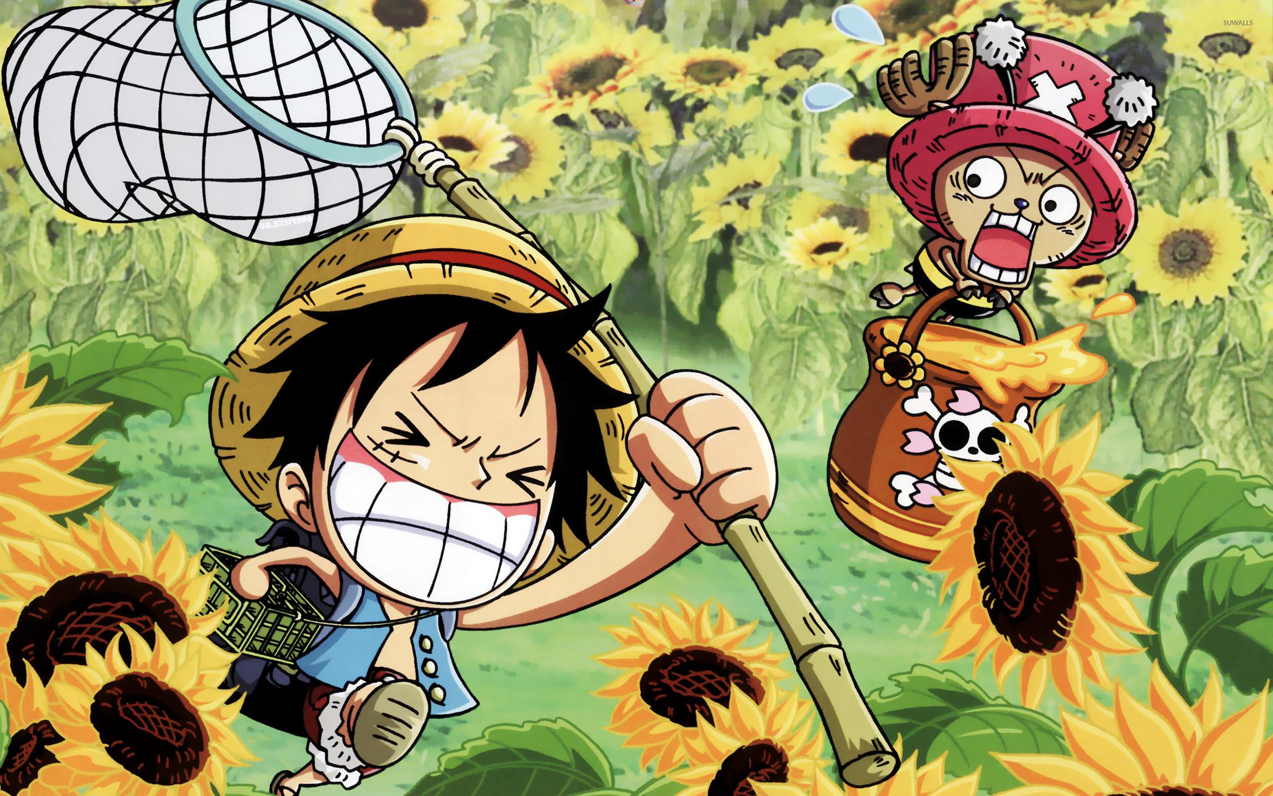 Funny One Piece Wallpaper – Luffy and Tony Tony Chopper .
