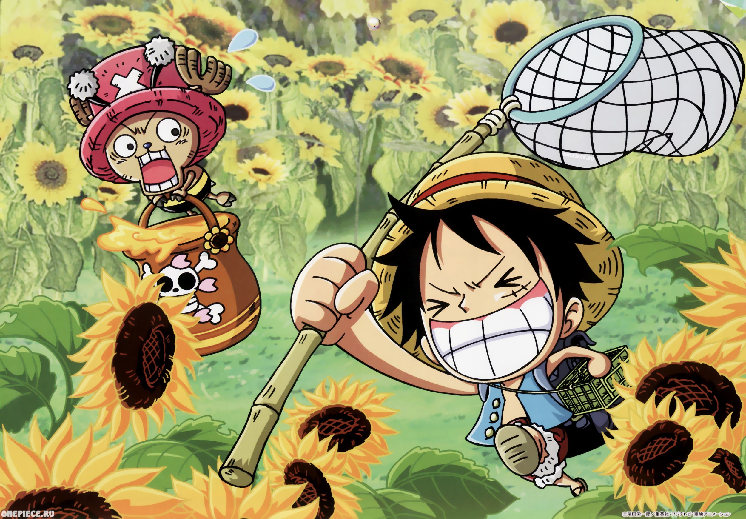 Funny One Piece