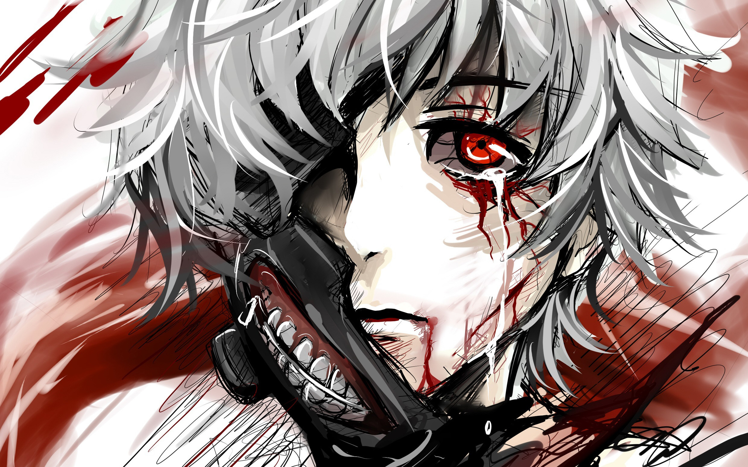 Tokyo Ghoul Touka Kirishima · HD Wallpaper   Hintergrund ID:596711