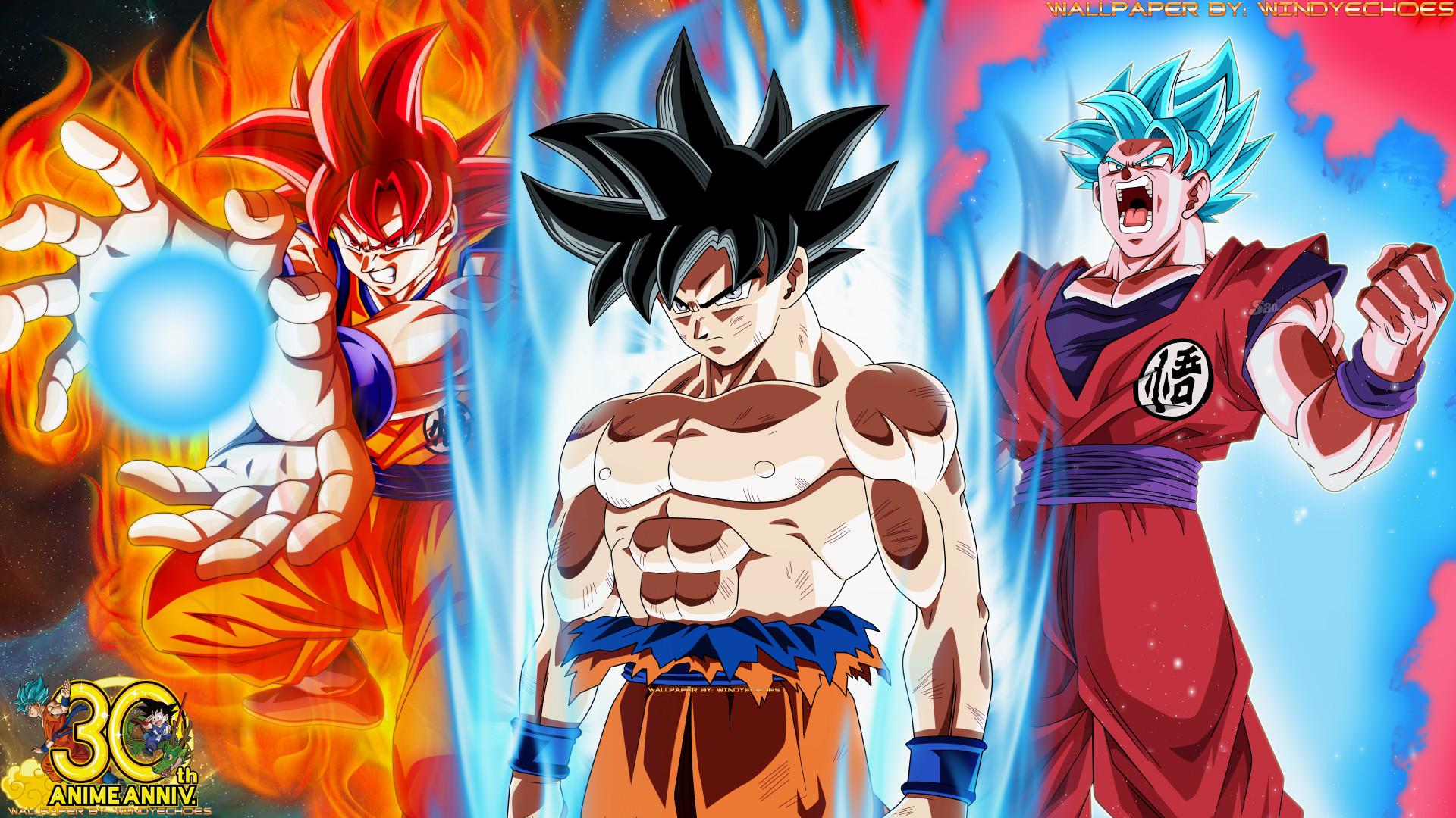 … Goku Super Saiyan God – All Three Transformations by WindyEchoes