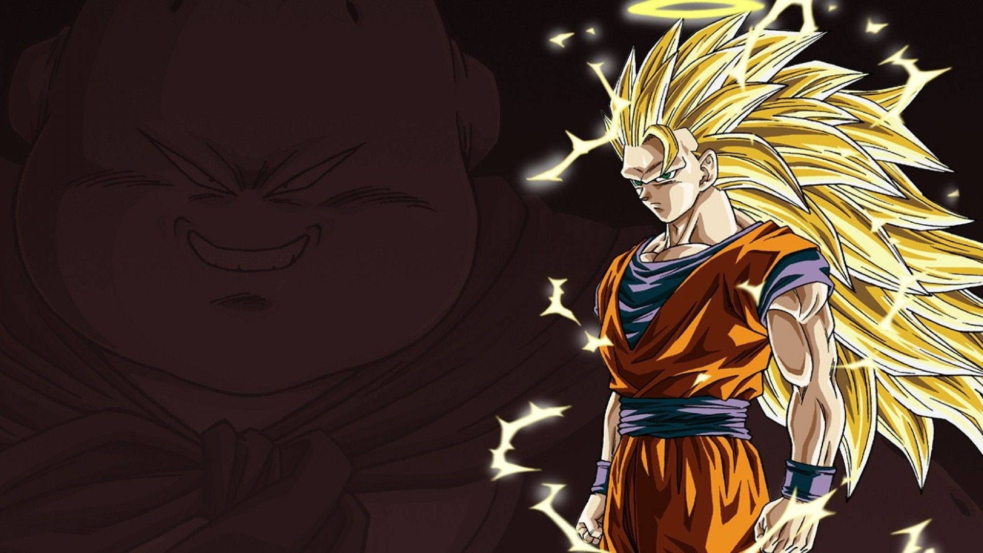 HD Super Saiyan 3 Goku Computer Wallpaper – HiReWallpapers 877