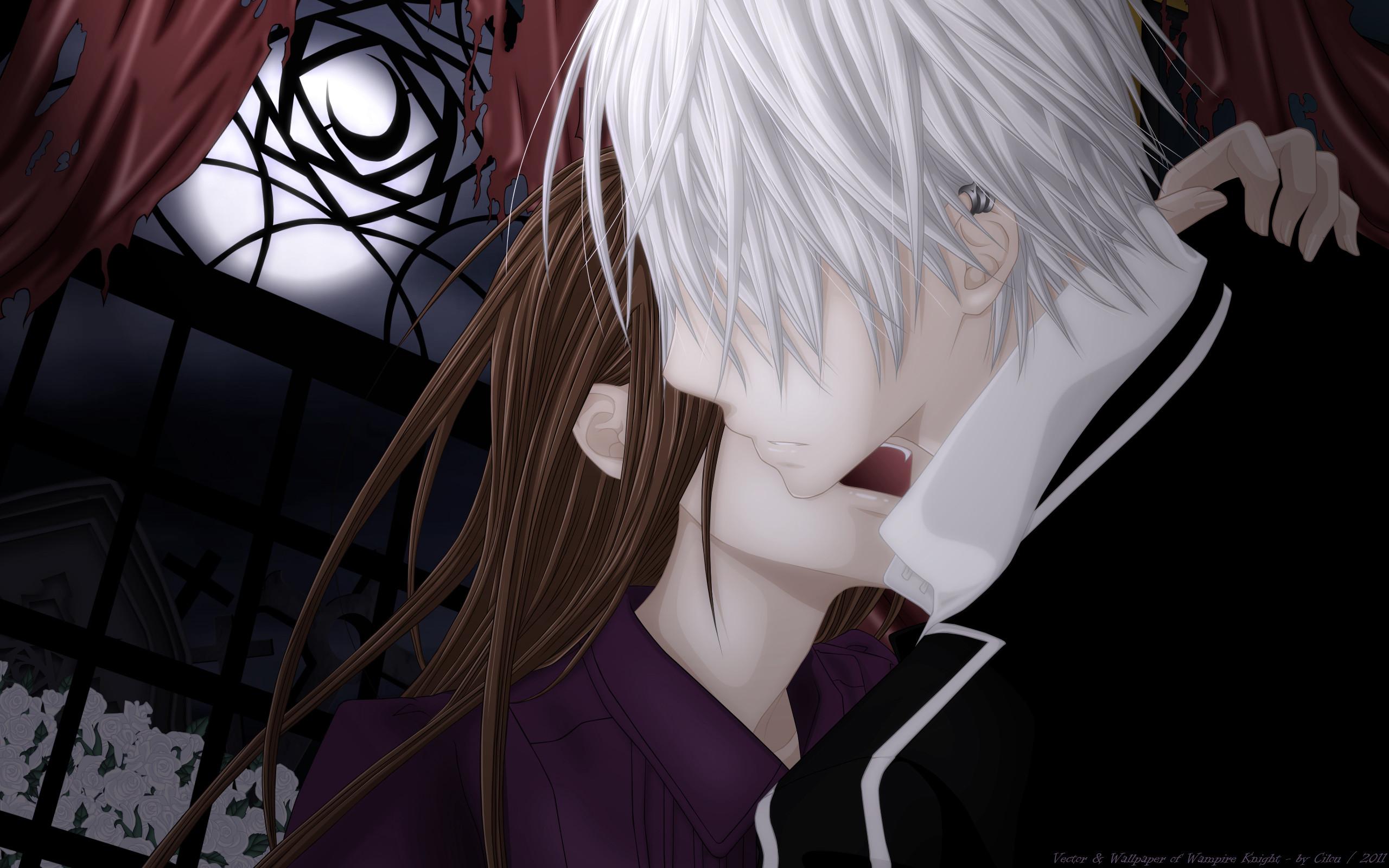 Tags: Anime, Vampire Knight, Kiryuu Zero, Yuki Cross, Wallpaper,