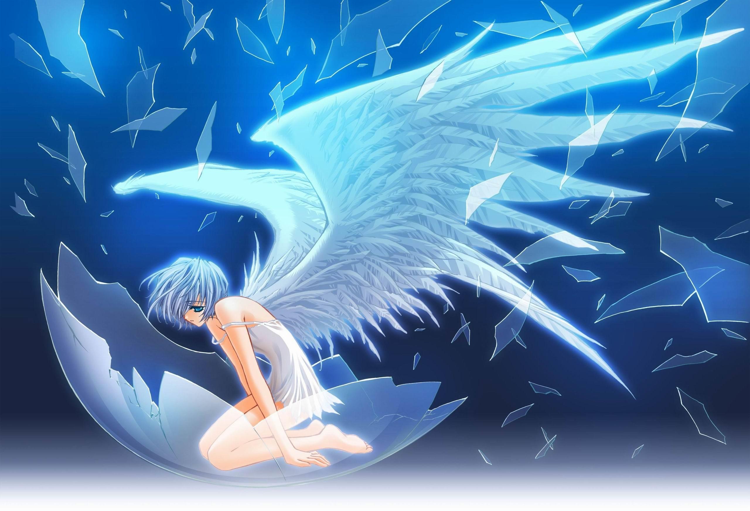 Anime Angel Wallpapers Desktop Background