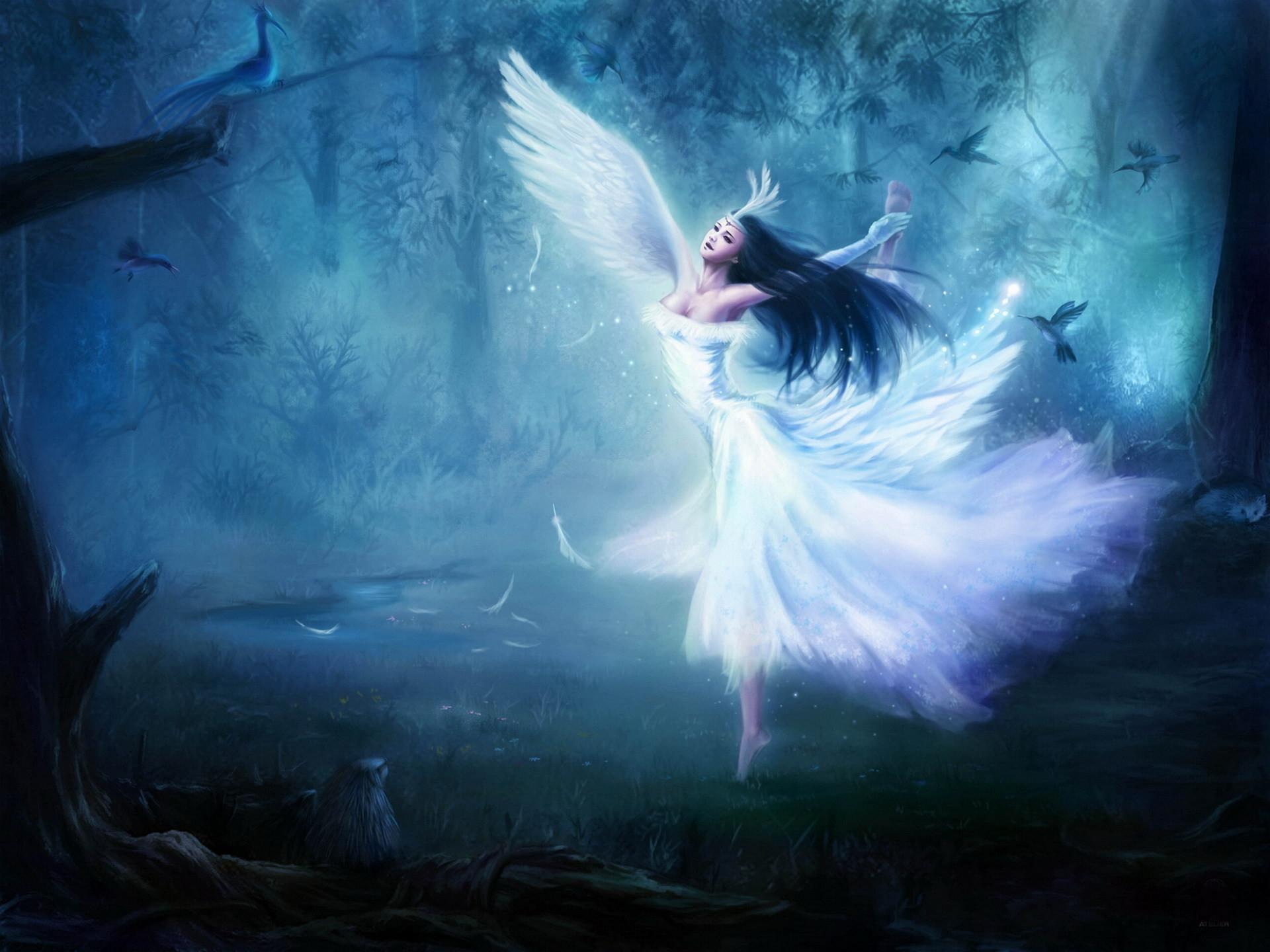 White Blue Angel